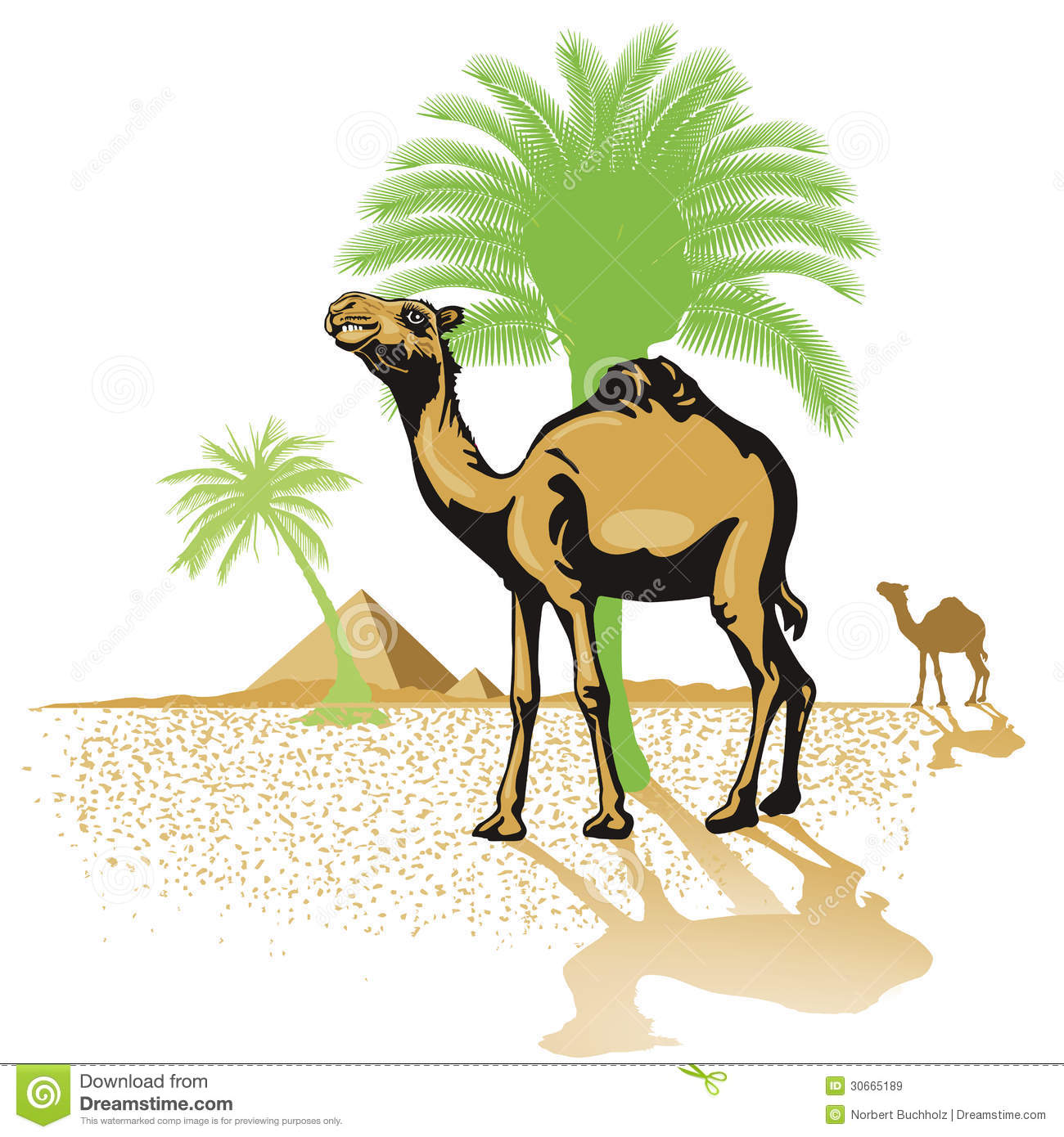 Camels In Desert Royalty Free Stock Images - Image: 30665189