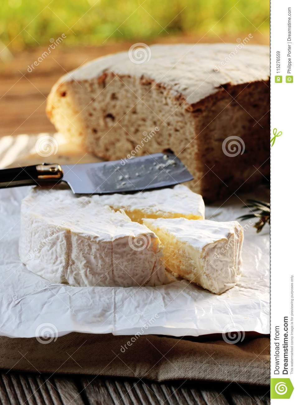 camembert french cheese normandy france stock image image of bread rh dreamstime com