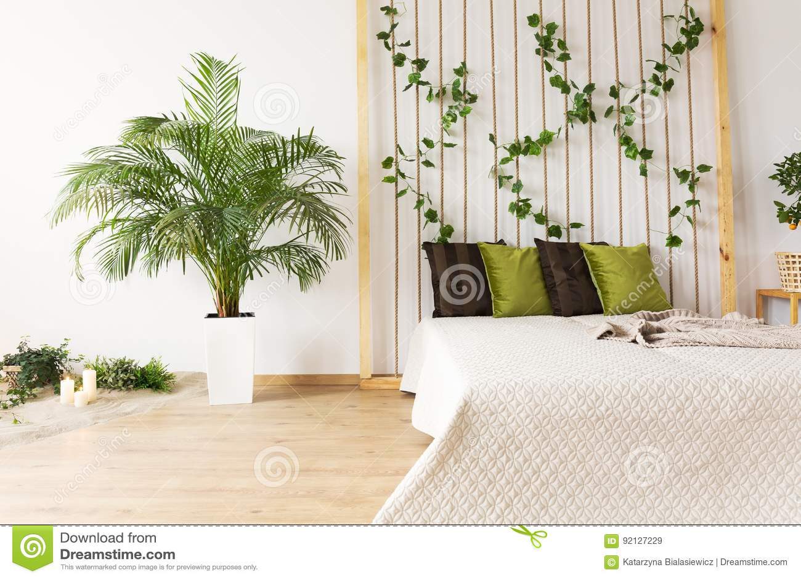 Pianta Camera Da Letto Matrimoniale : Camera da letto vaga con la pianta decorativa immagine stock