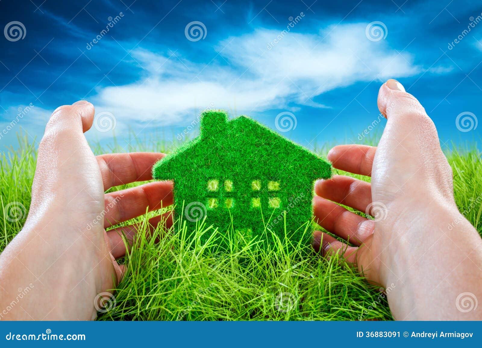 Download Camera di Eco immagine stock. Immagine di tenuta, concetto - 36883091