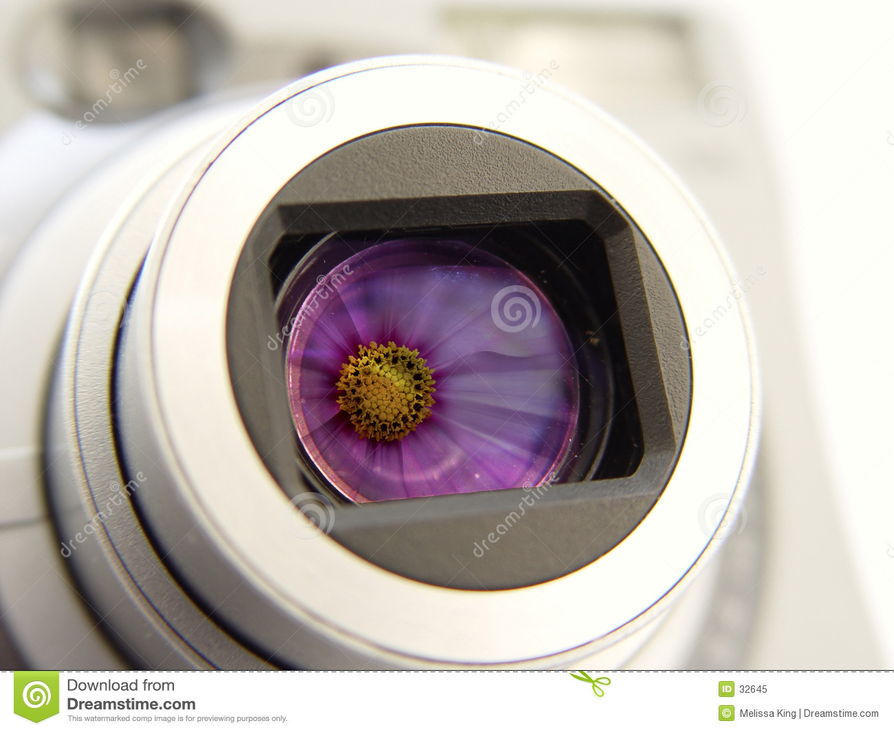 Camera with Flowers Reflection