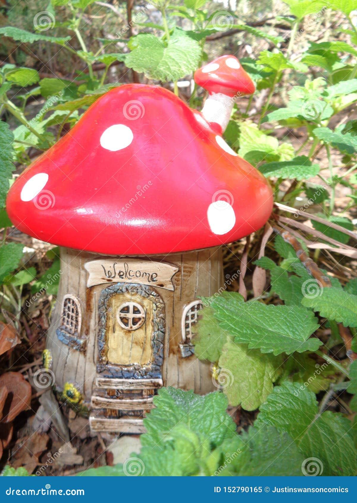 Camera leggiadramente del fungo rosso
