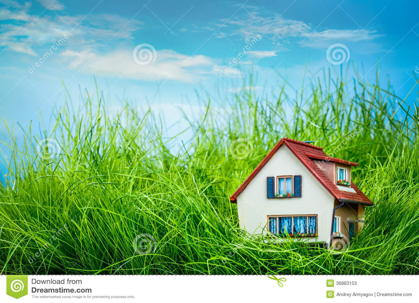 Download Camera sull'erba verde immagine stock. Immagine di ecologia - 36883153