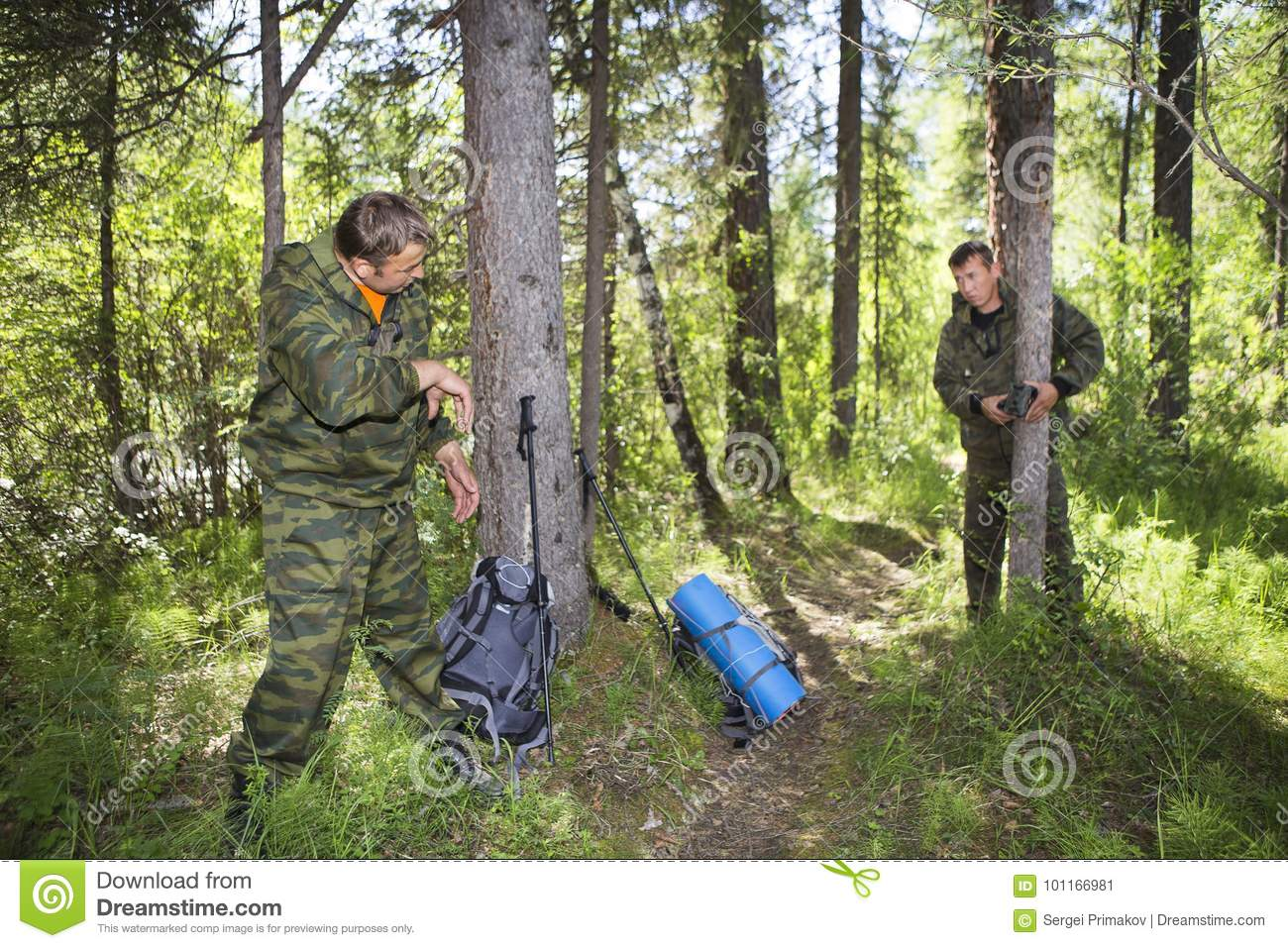 Camera trap on the tree stock image  Image of equipment