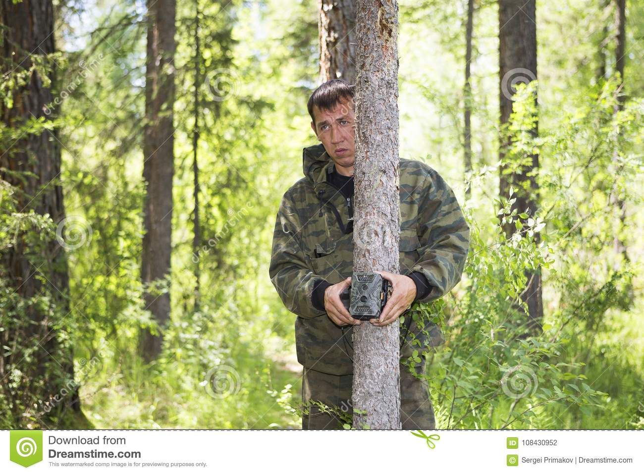 Camera trap on the tree stock photo  Image of security