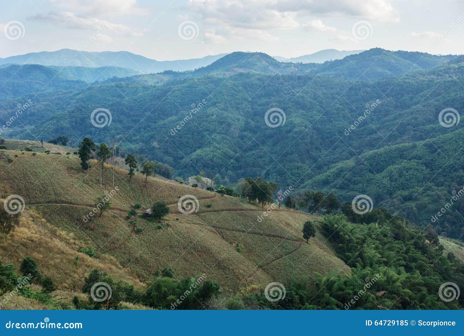 Camera in valle fra le montagne