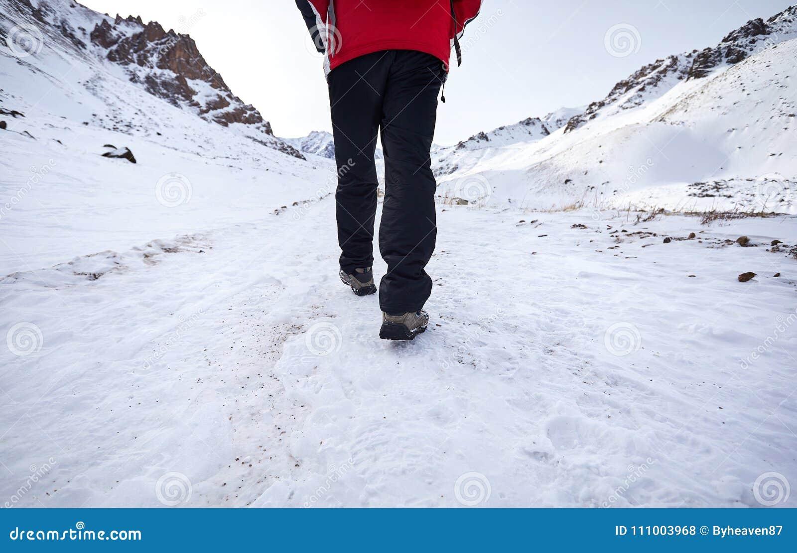 Caminante en montañas nevosas