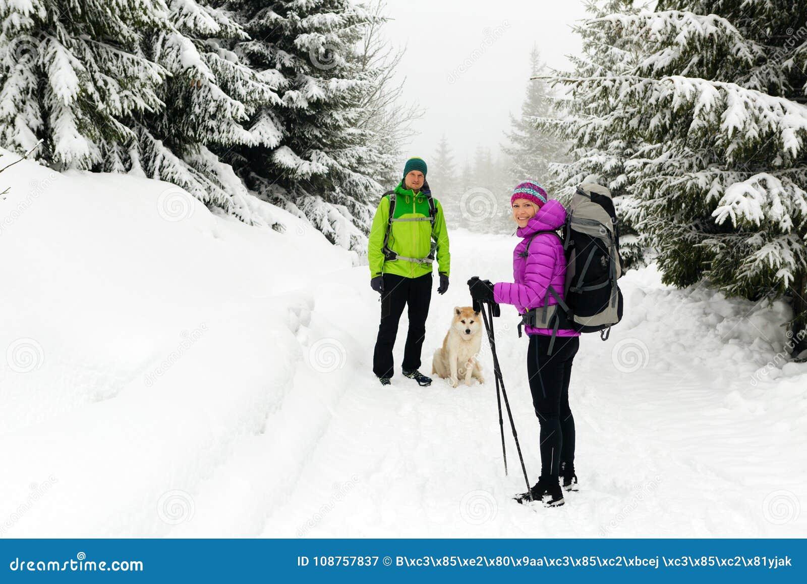 Caminantes de los pares que caminan en bosque del invierno