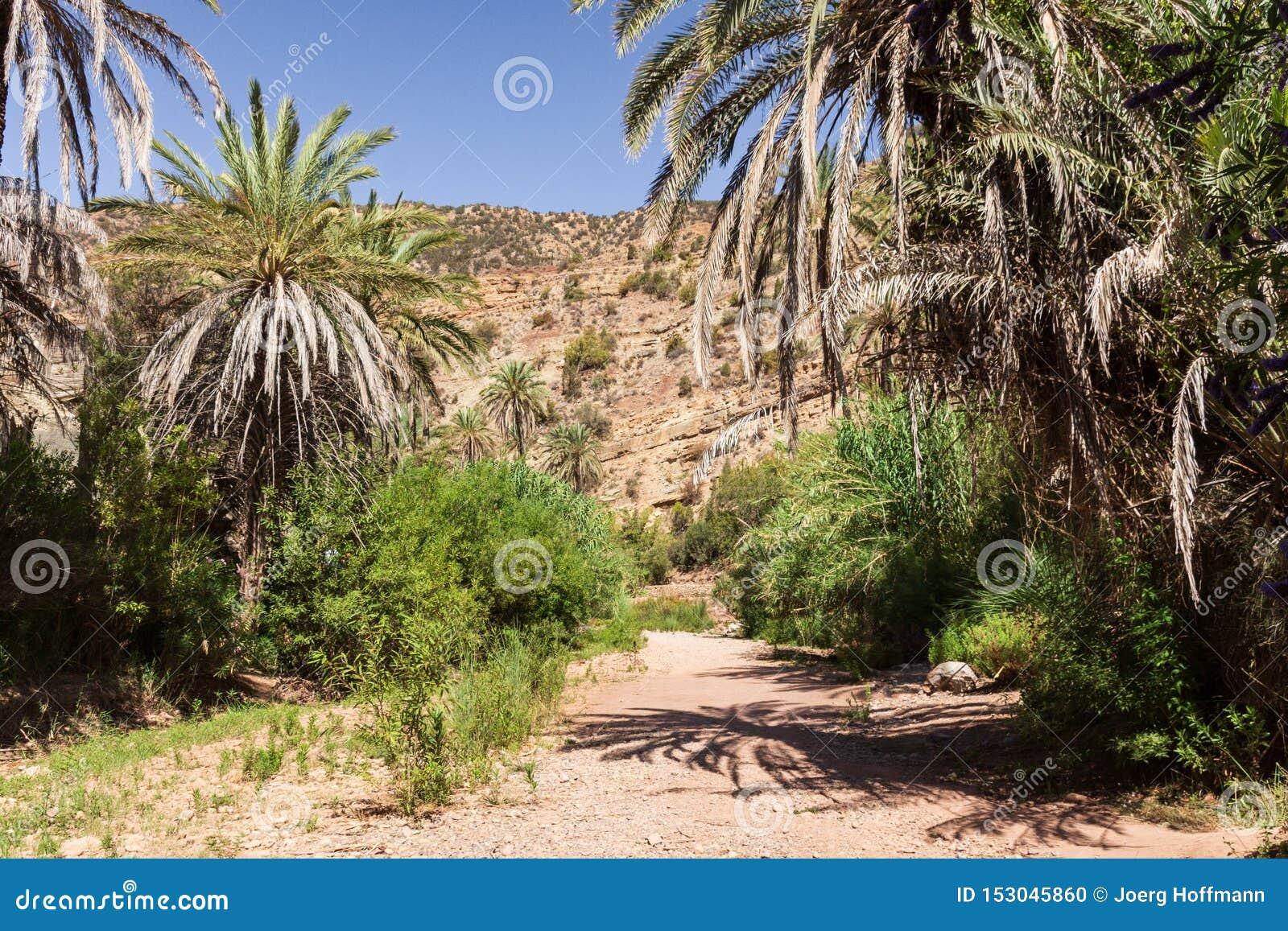 Caminar la trayectoria en el valle de Paradise cerca de Agadir en el valle de Marruecos