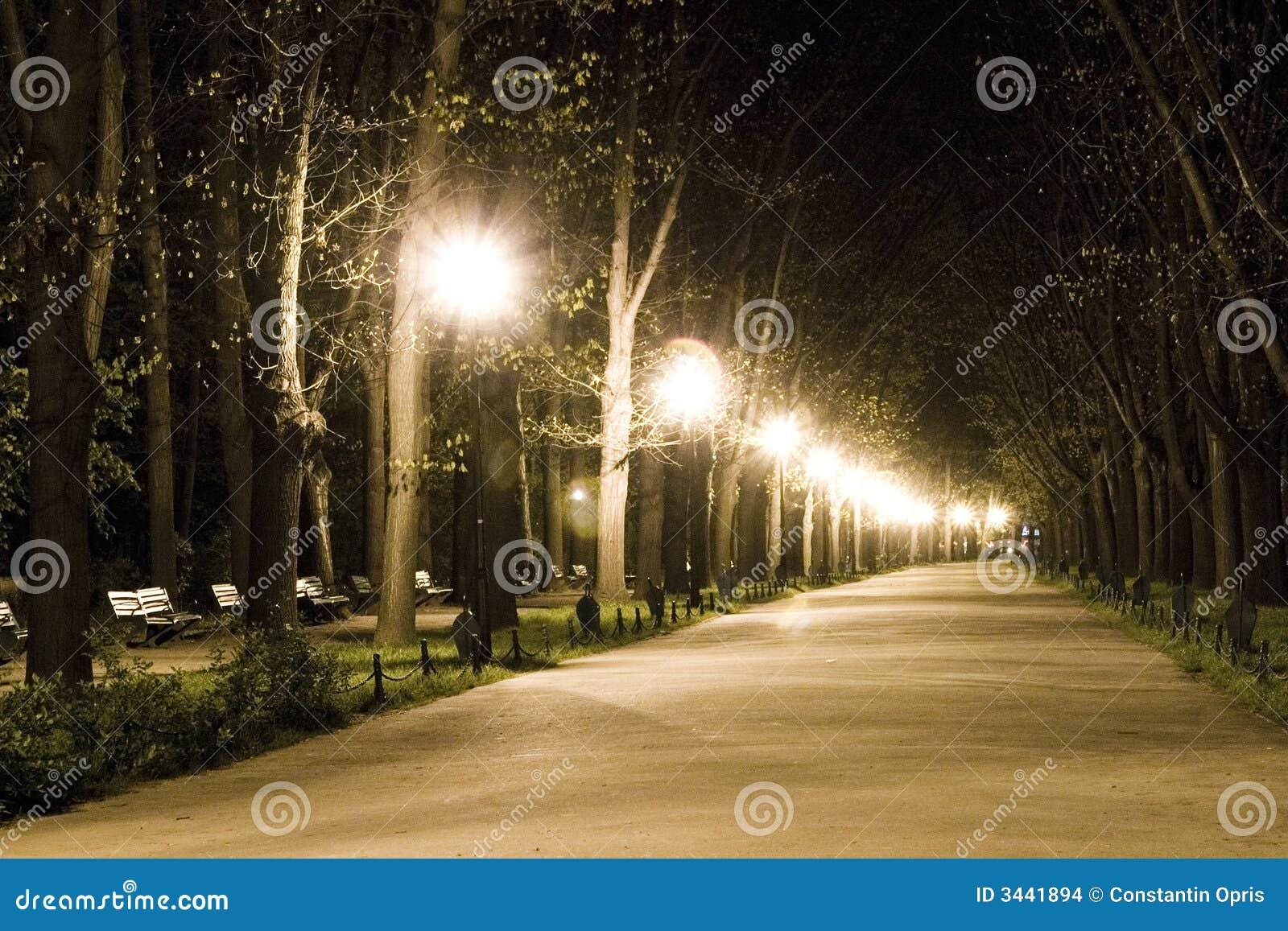 Caminata en parque en la noche