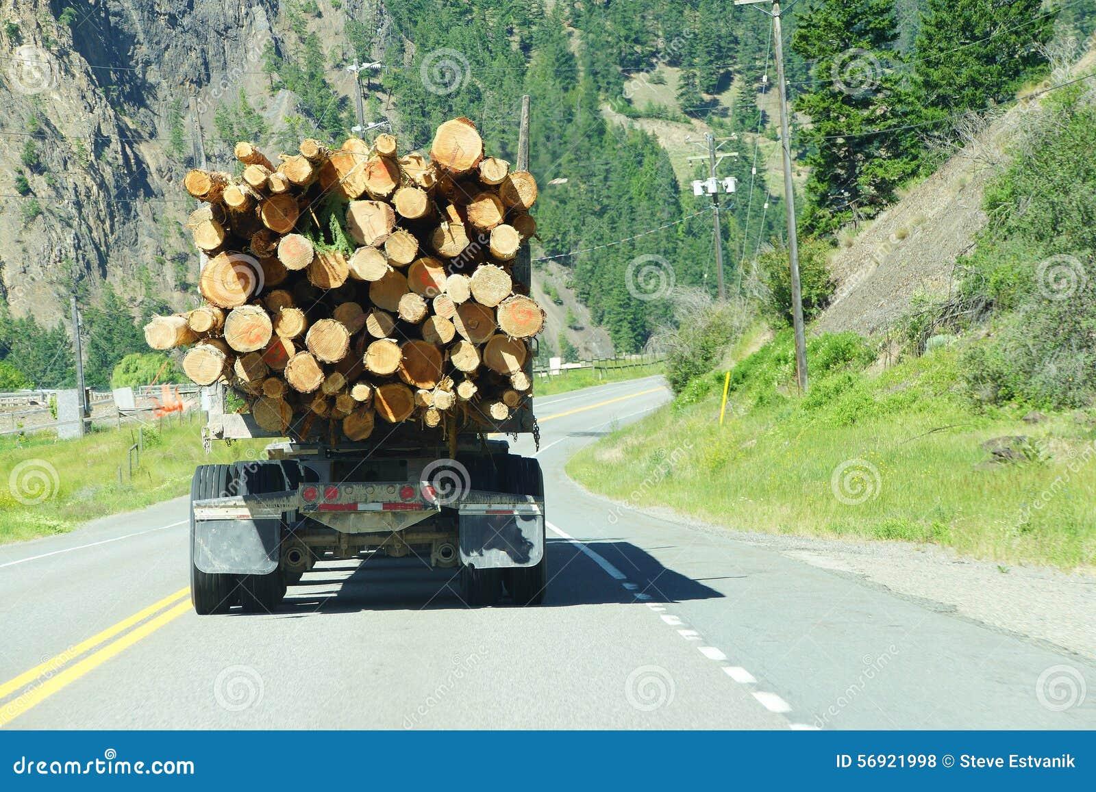 Caminhão de registro na estrada da montanha