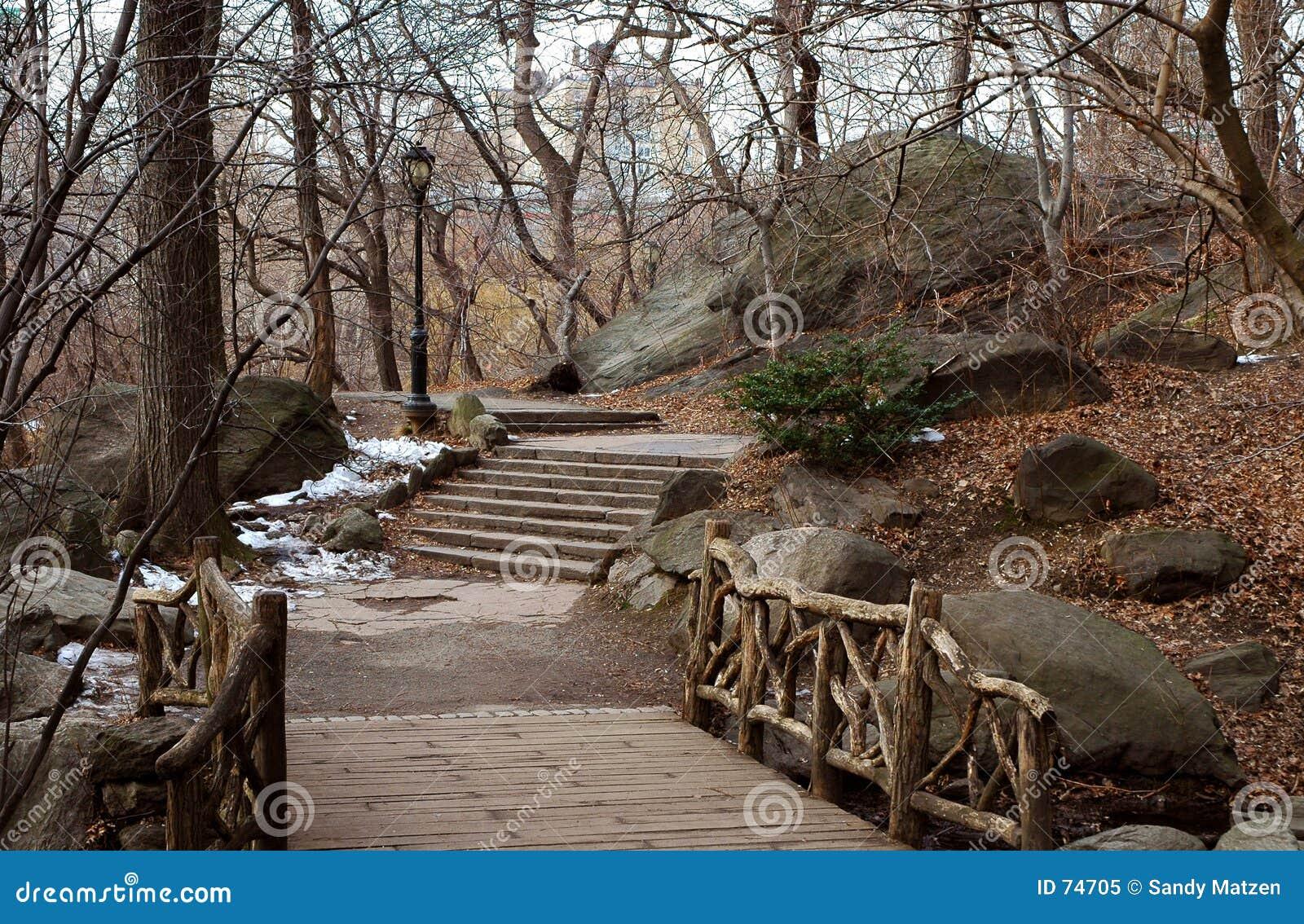 Caminhada em Central Park