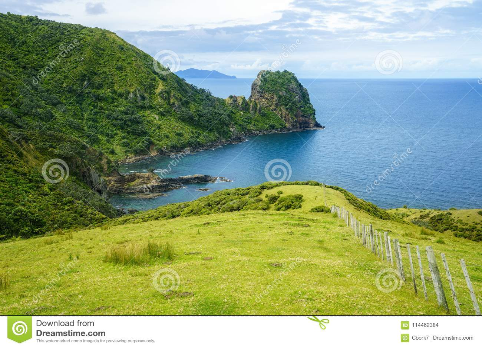 Caminhando a passagem litoral de Coromandel, Nova Zelândia 58