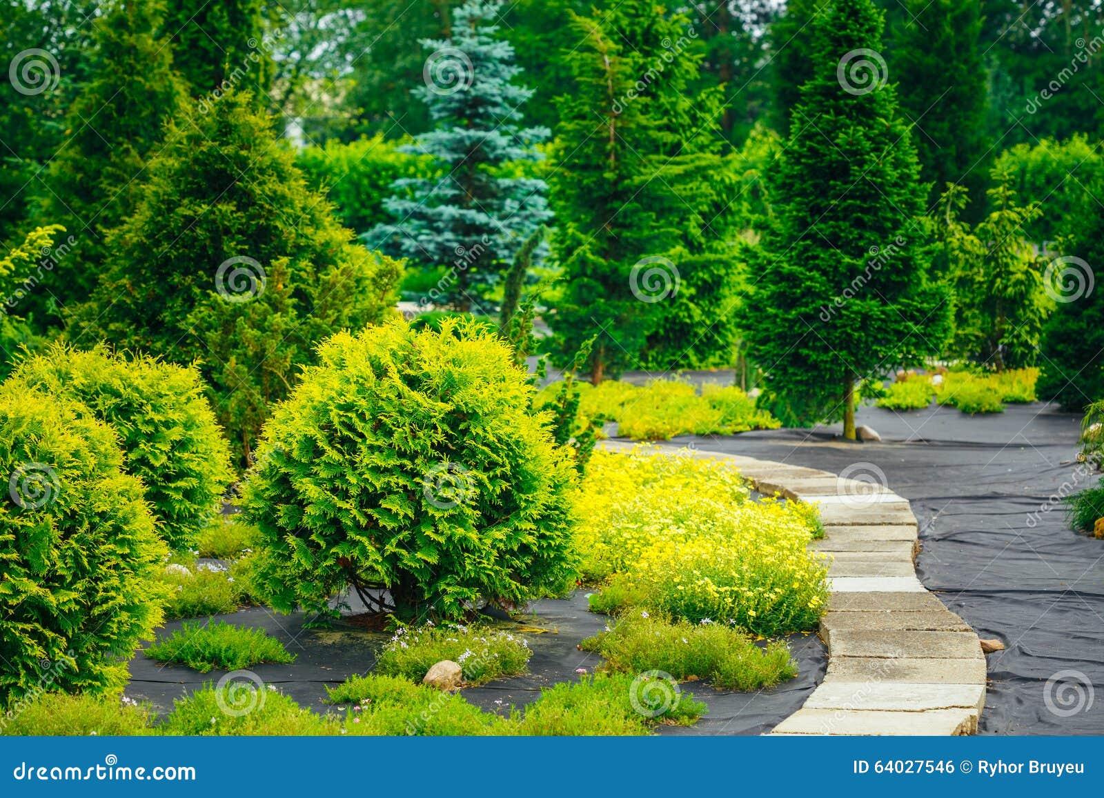 Caminho de pedra no parque do jardim arbustos decorativos for Arbustos decorativos