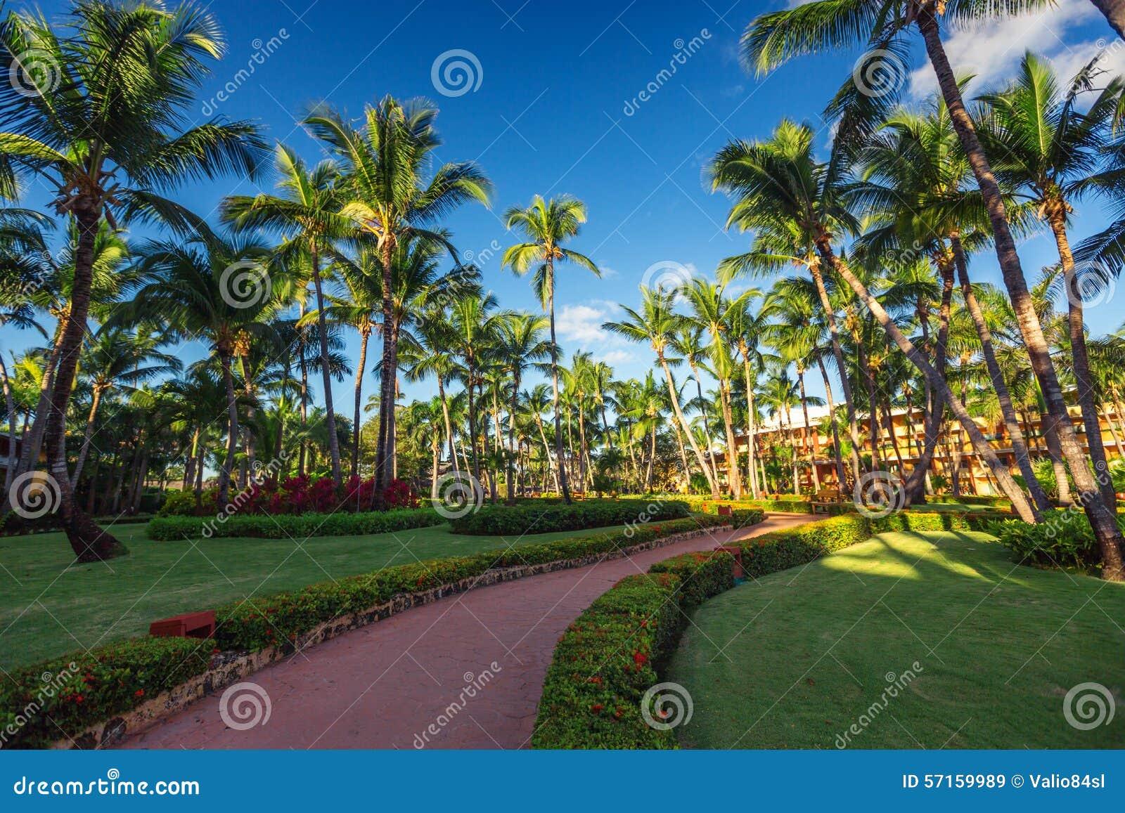 Caminho e jardim tropical na estância de verão, Punta Cana