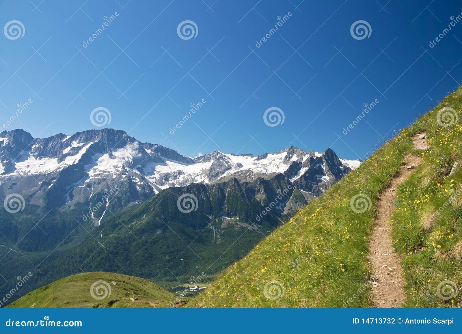 Camino alpestre
