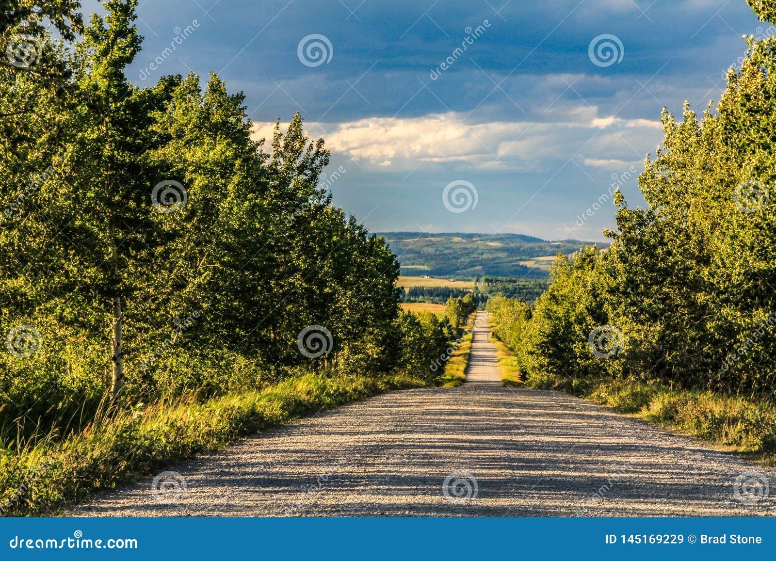 Camino casero del aceite cerca de John Ware Ridge