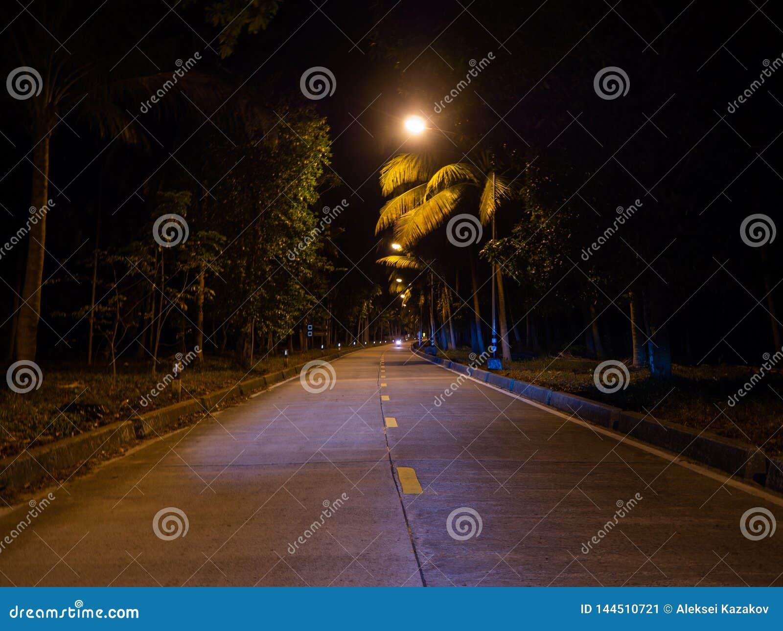 Camino de la noche de Ko Phangan