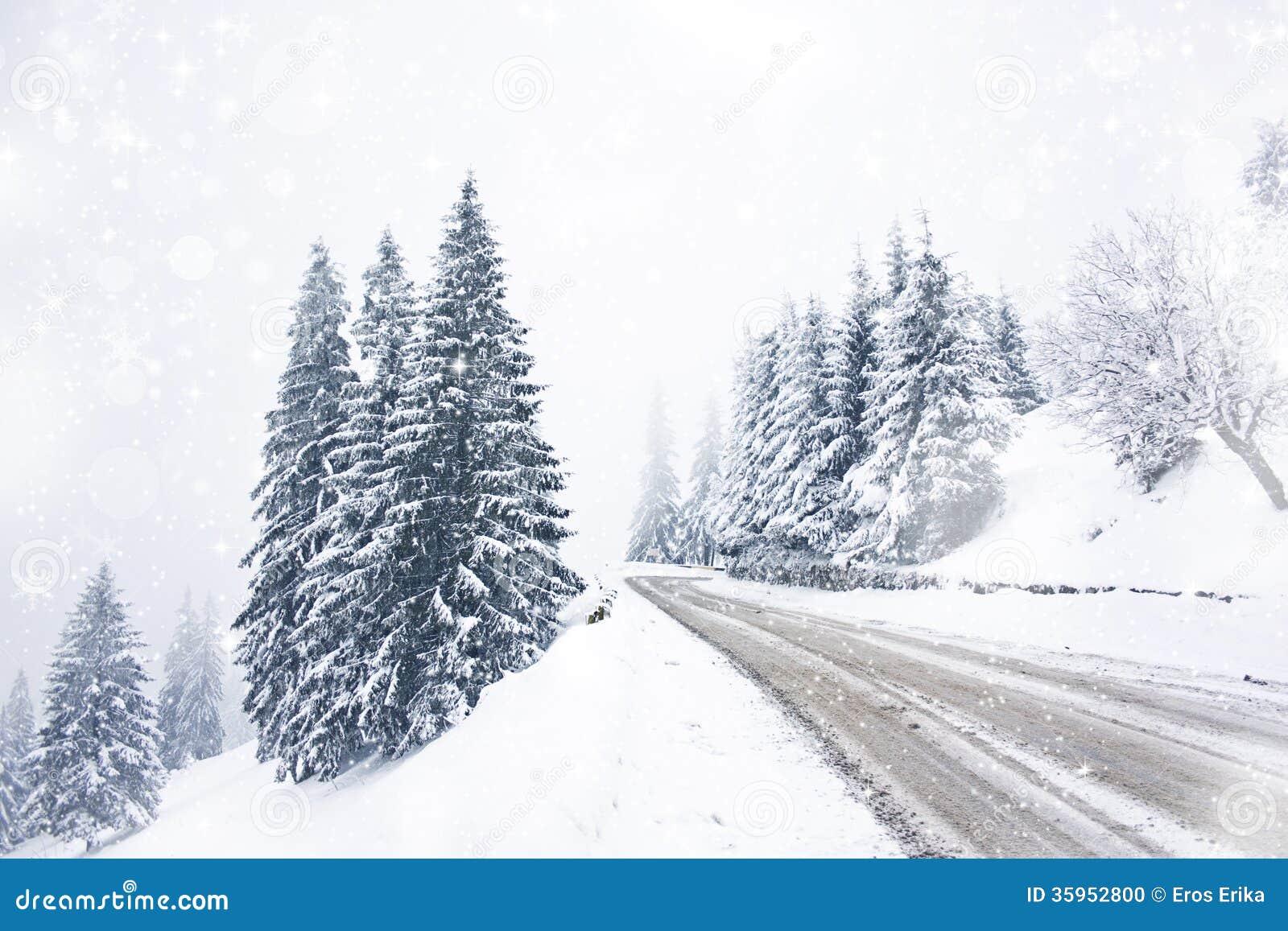 Camino del invierno en las montañas