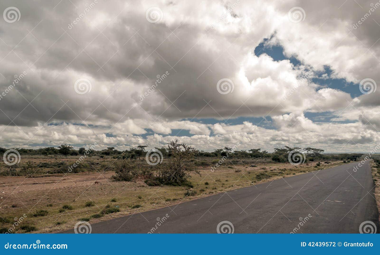 Camino en la sabana africana