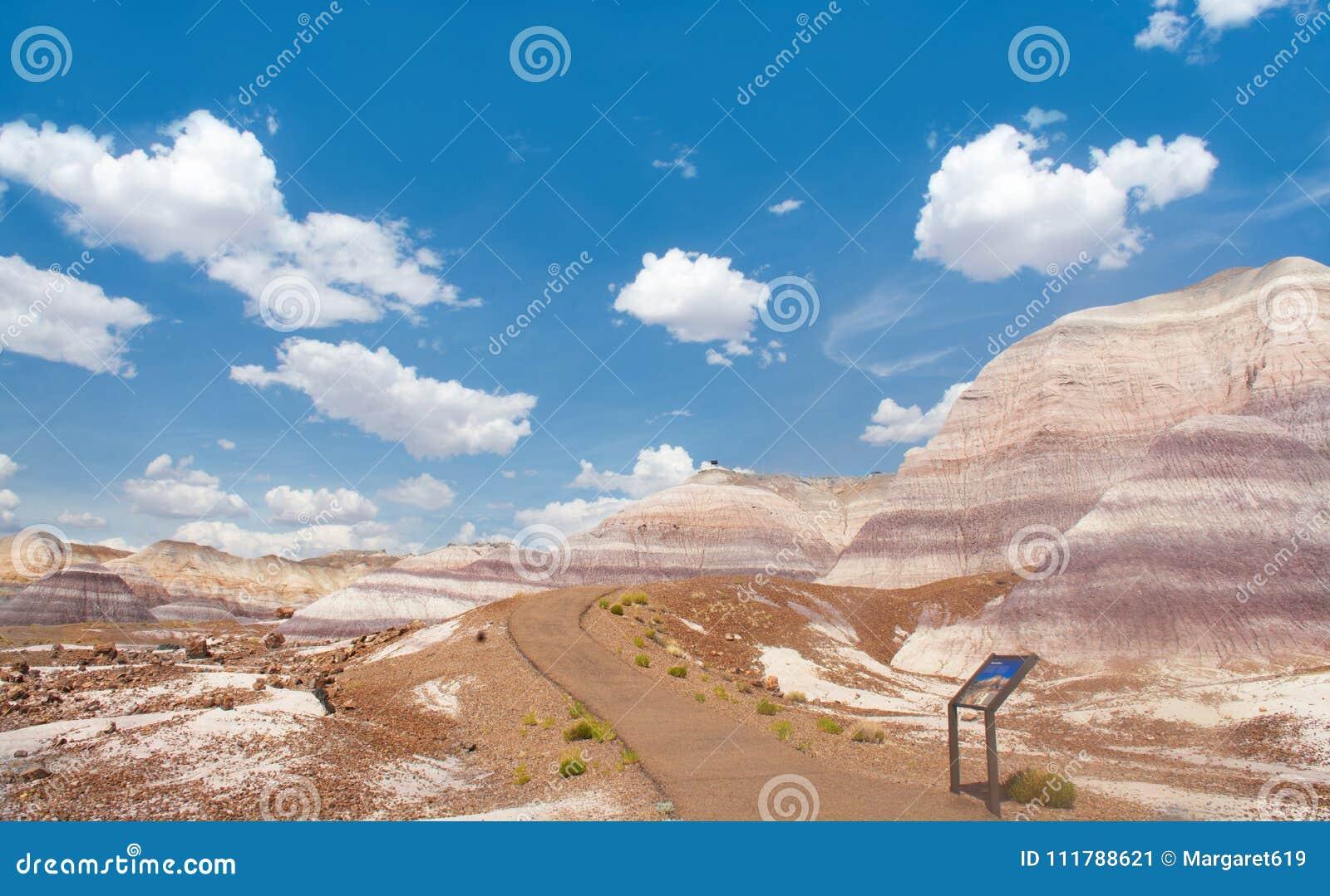 Camino en las montañas del desierto en Arizona