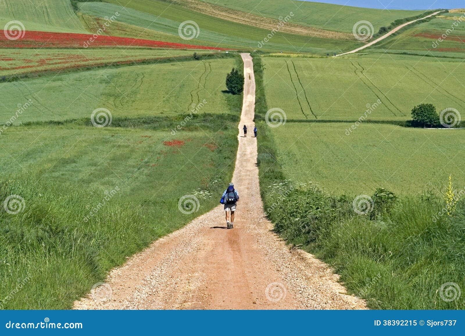 Camino Frances hiking pilgrims in rural landscape