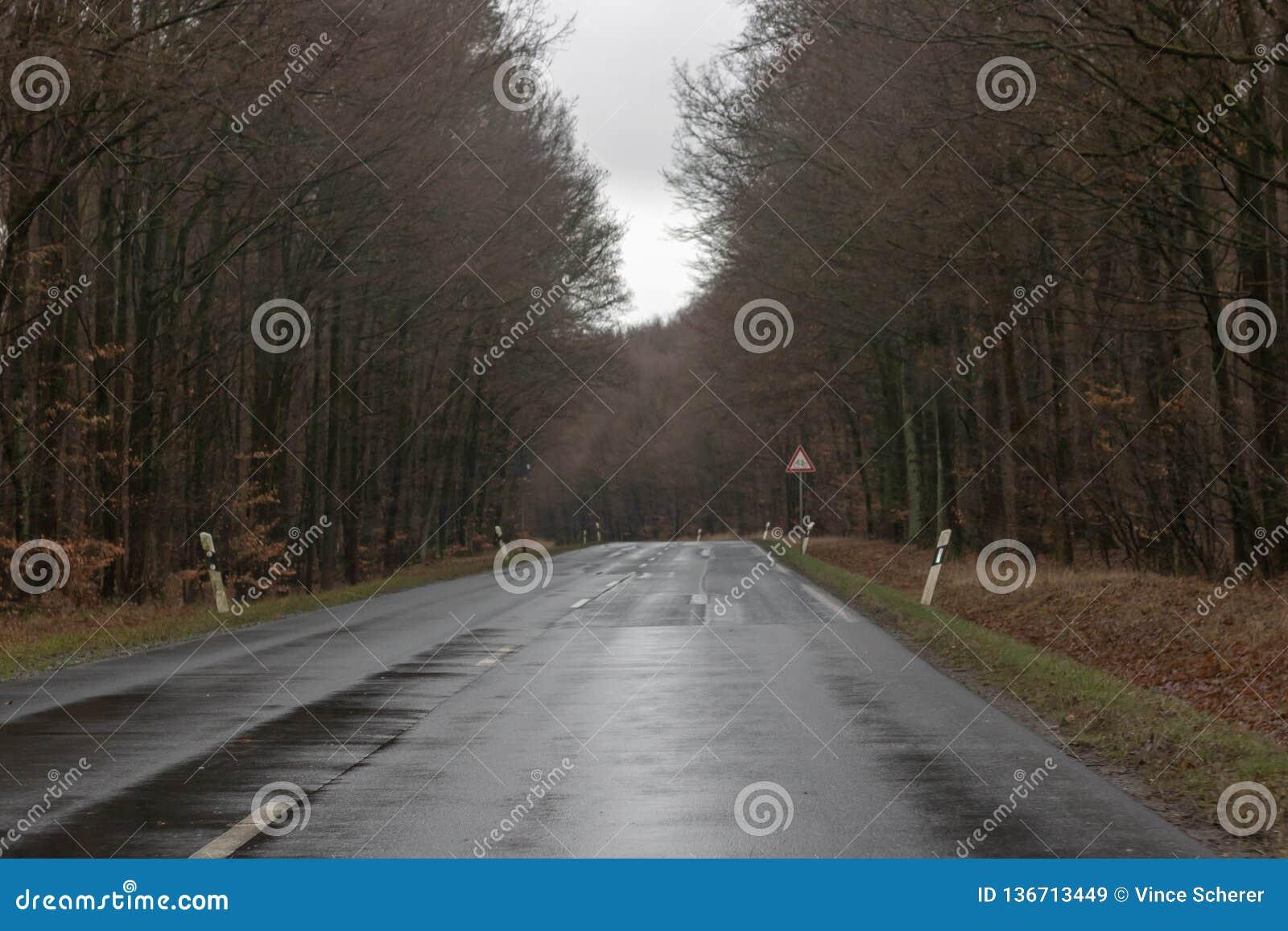 Camino mojado de la montaña en invierno
