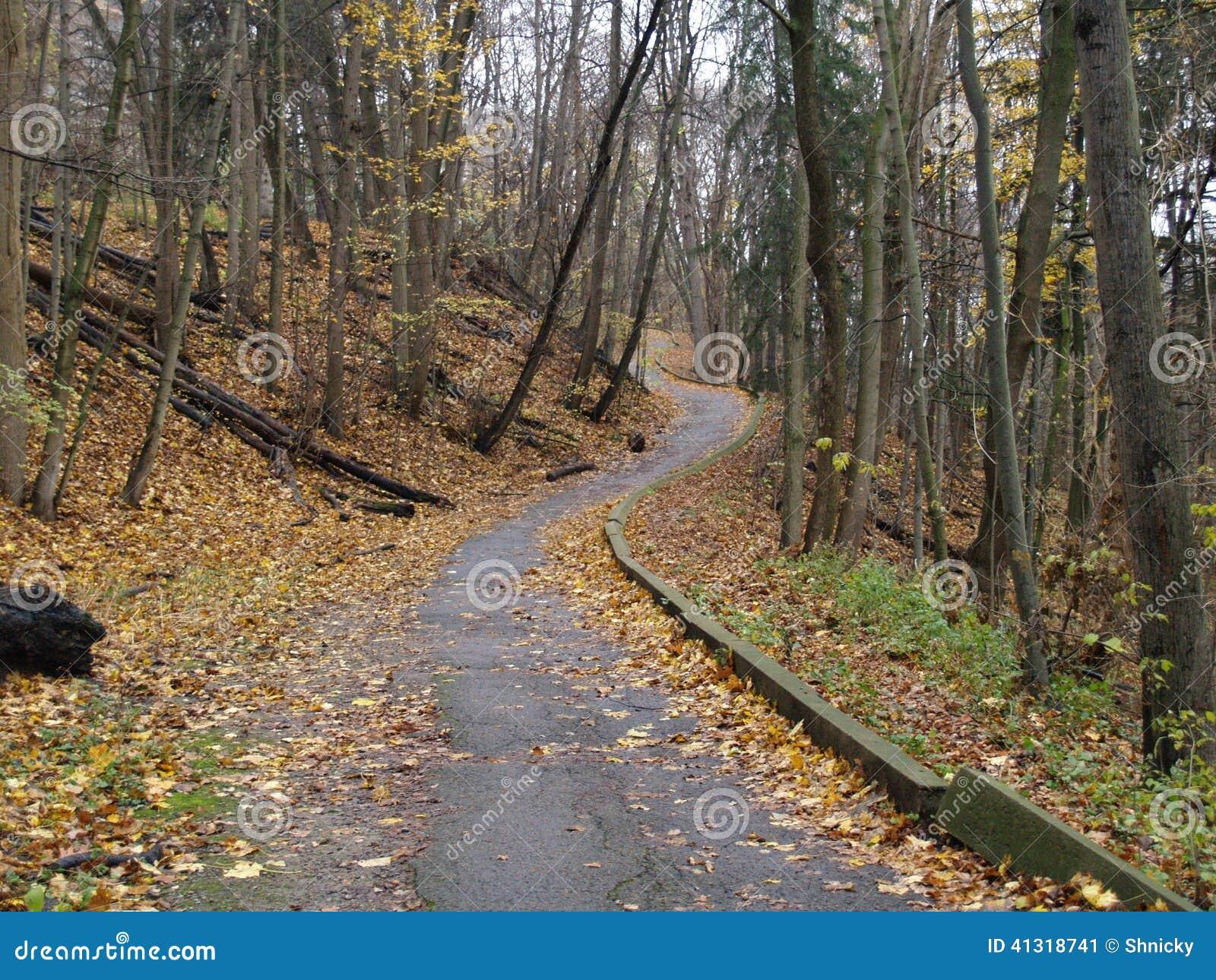 Camino solo del otoño, Toronto, Ontario, Canadá