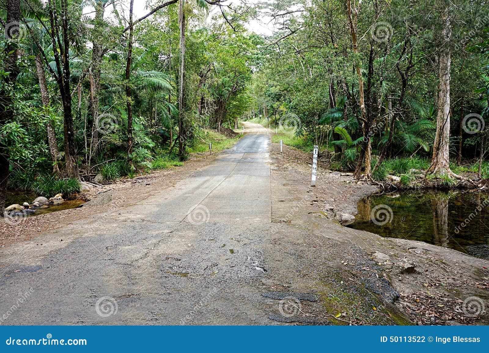 Camino tropical de la selva tropical