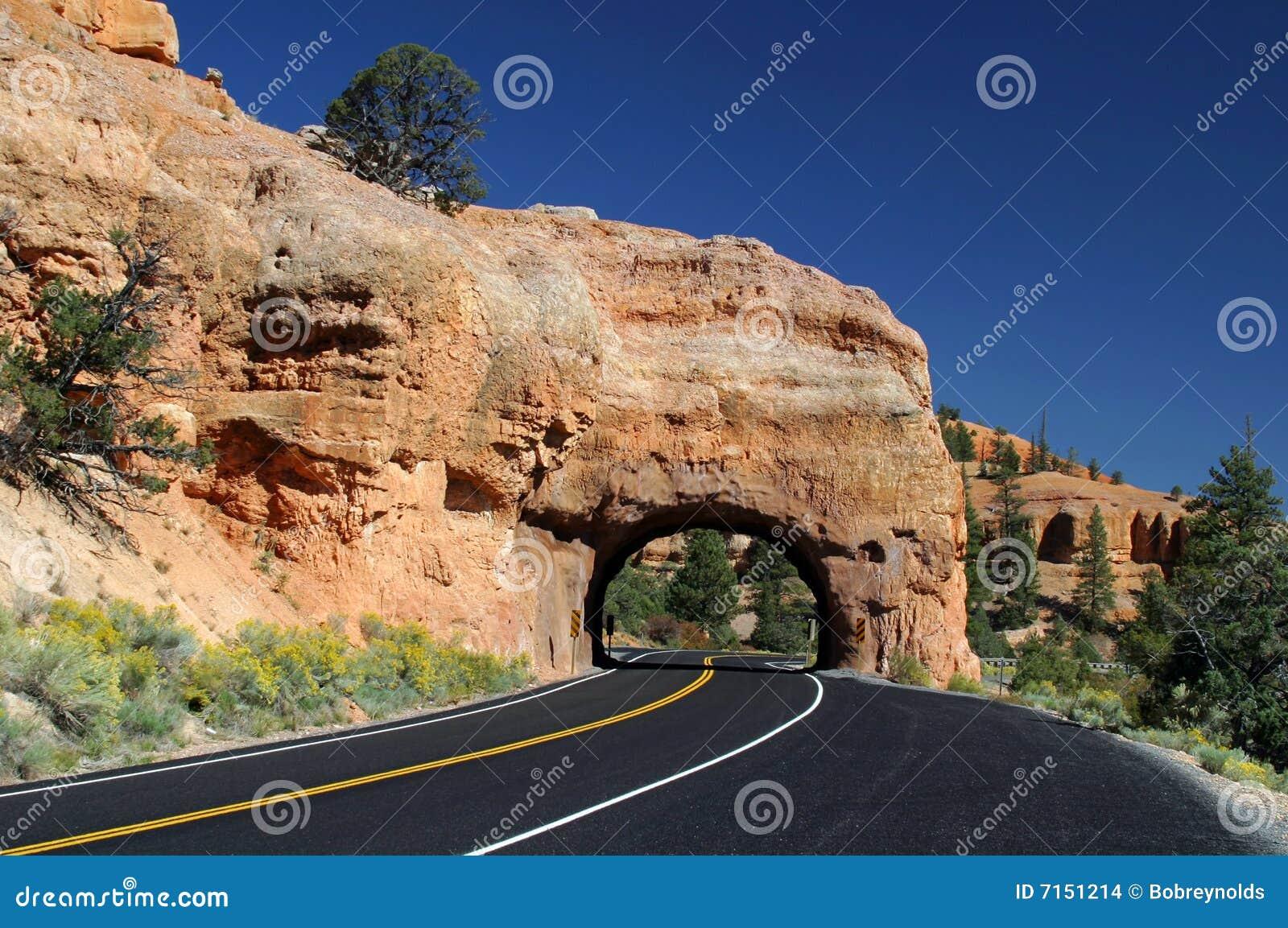 Camino vacío en el sudoeste