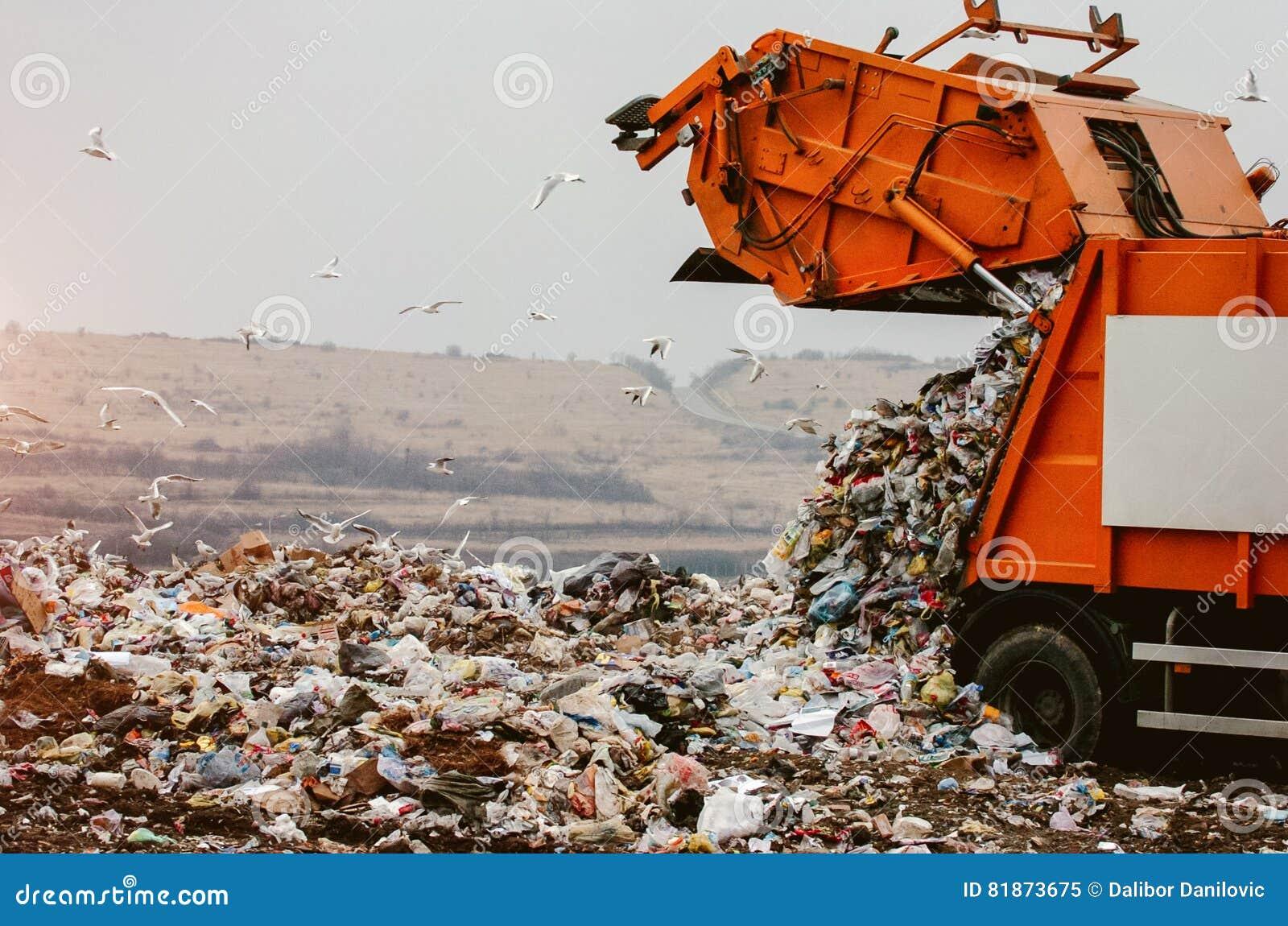 Camion à ordures vidant les déchets