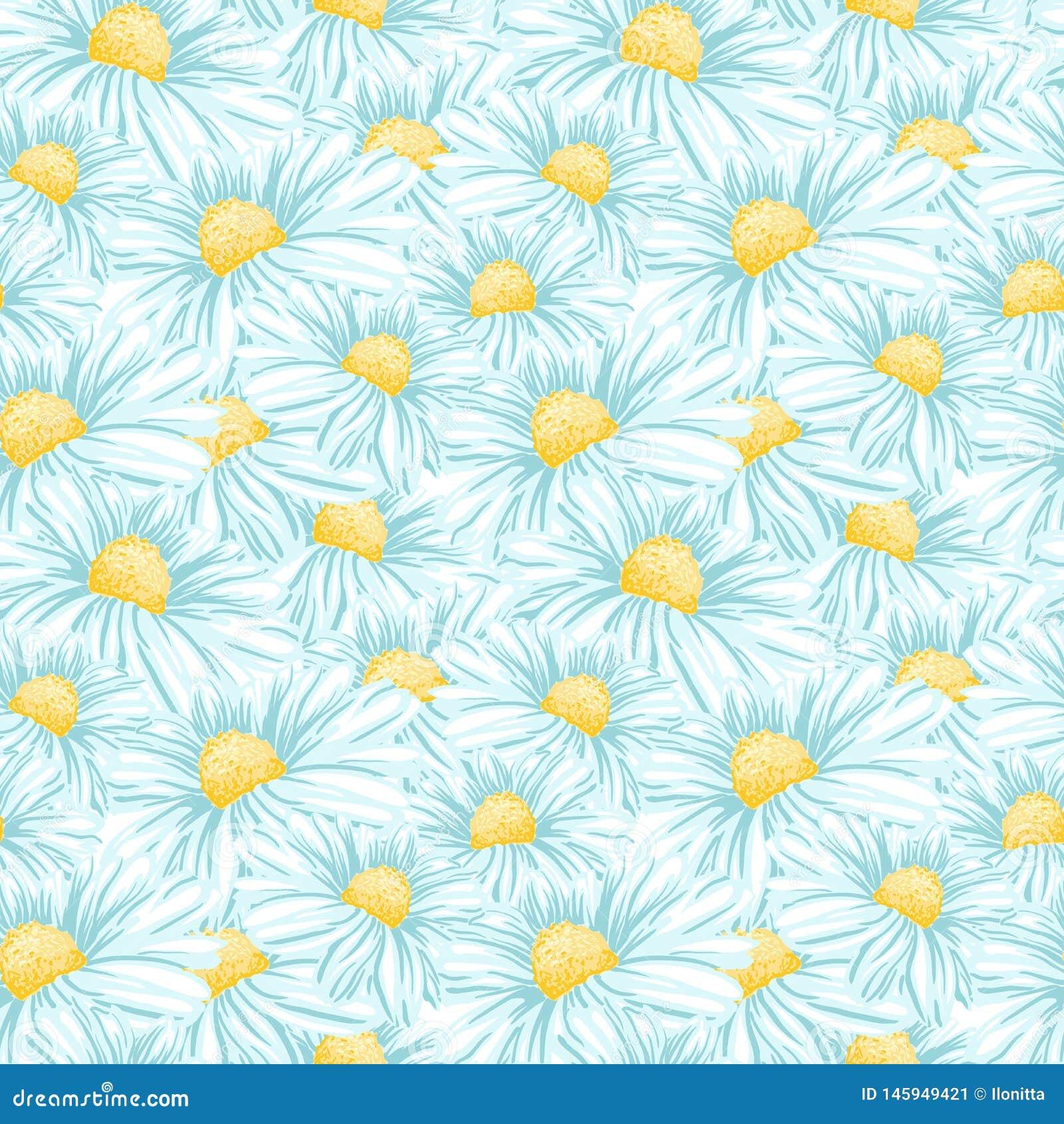 Camomila ou Daisy Seamless Vetora Pattern
