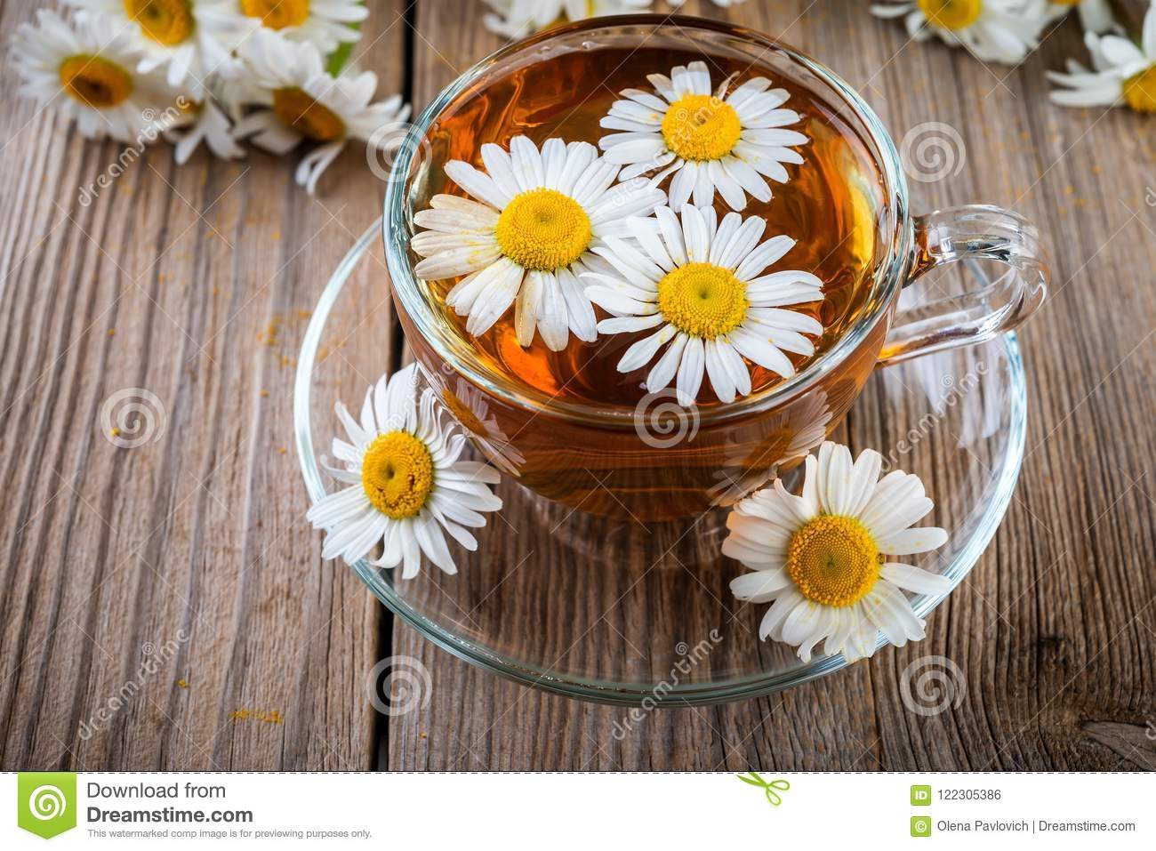 Camomile Daisy Tea Stock Photo Image Of Health Medicine 122305386