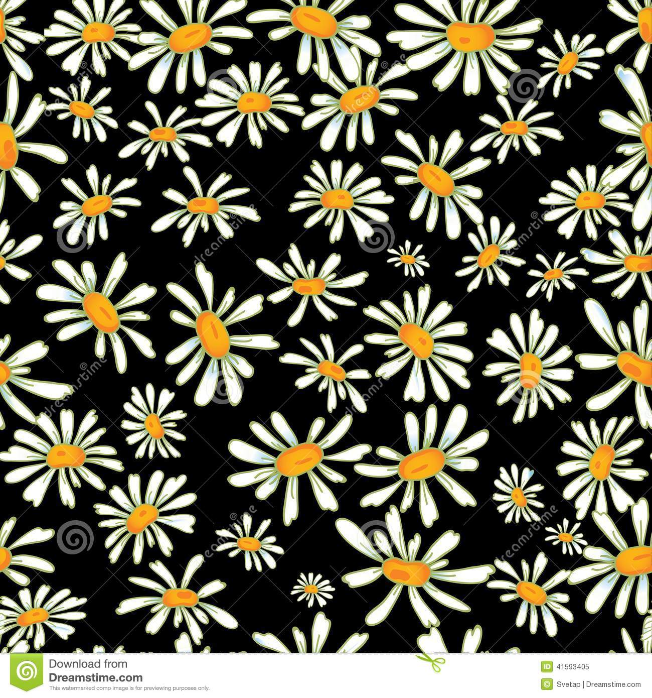 camomile seamless pattern stock vector illustration of