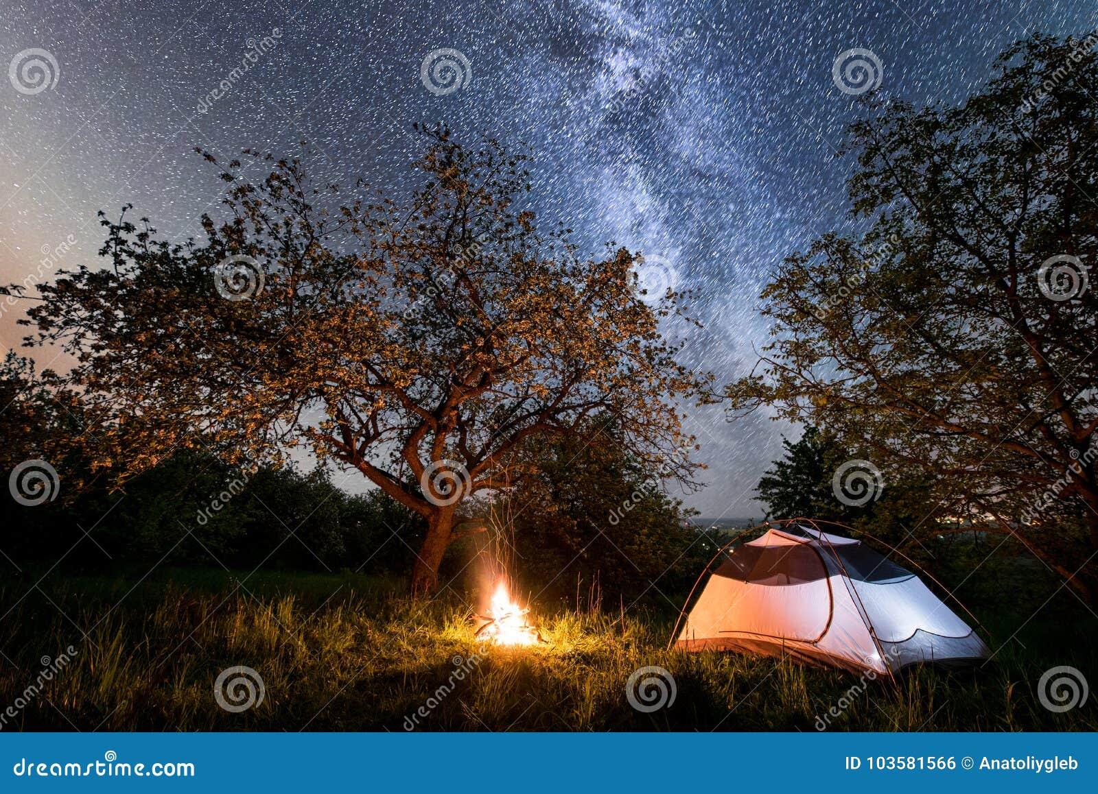 Campa för natt turist- tält nära lägereld under träd och härlig stjärnklar mjölkaktig väg för himmel och