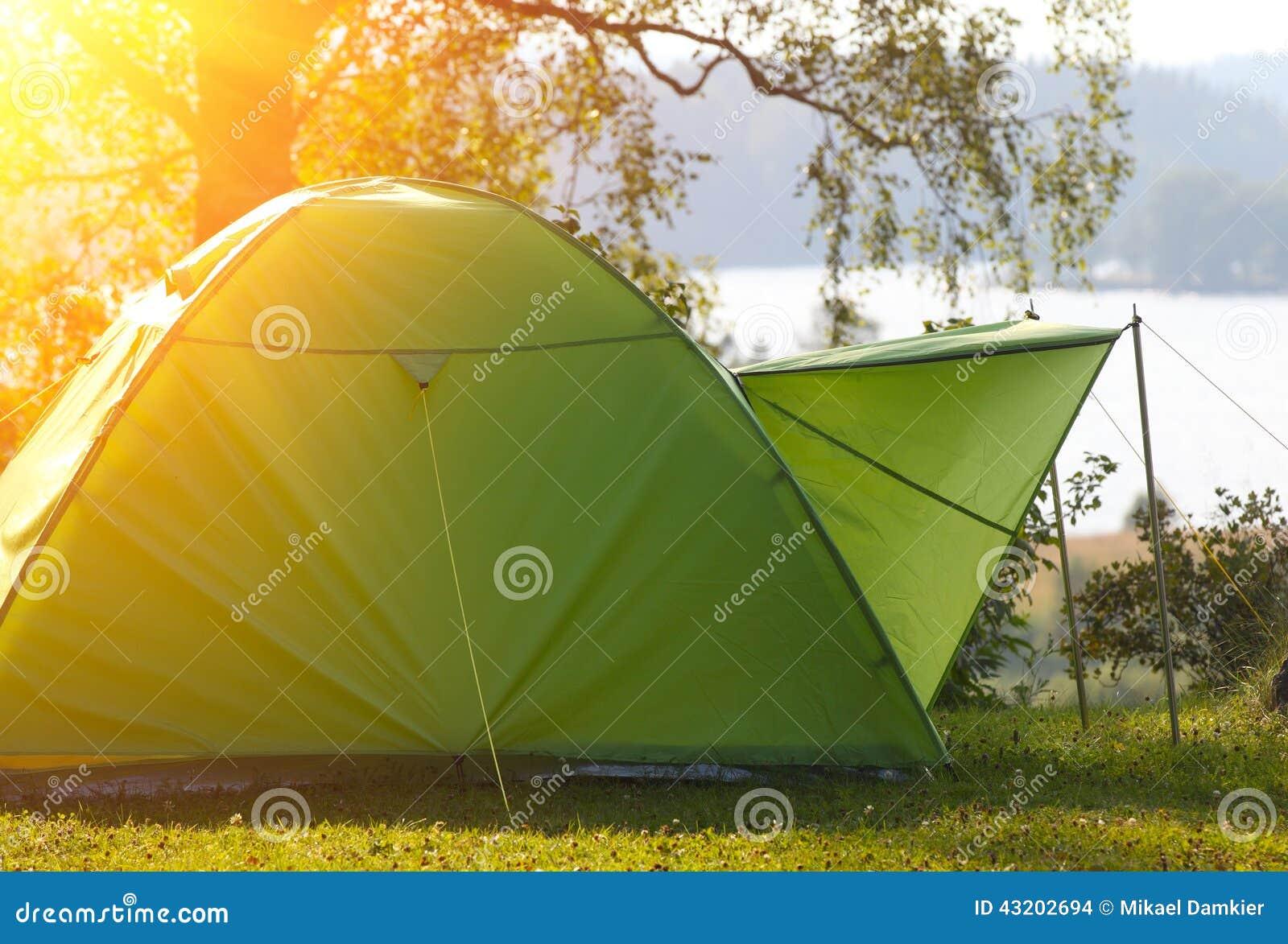 Download Campa skog redaktionell fotografering för bildbyråer. Bild av skog - 43202694