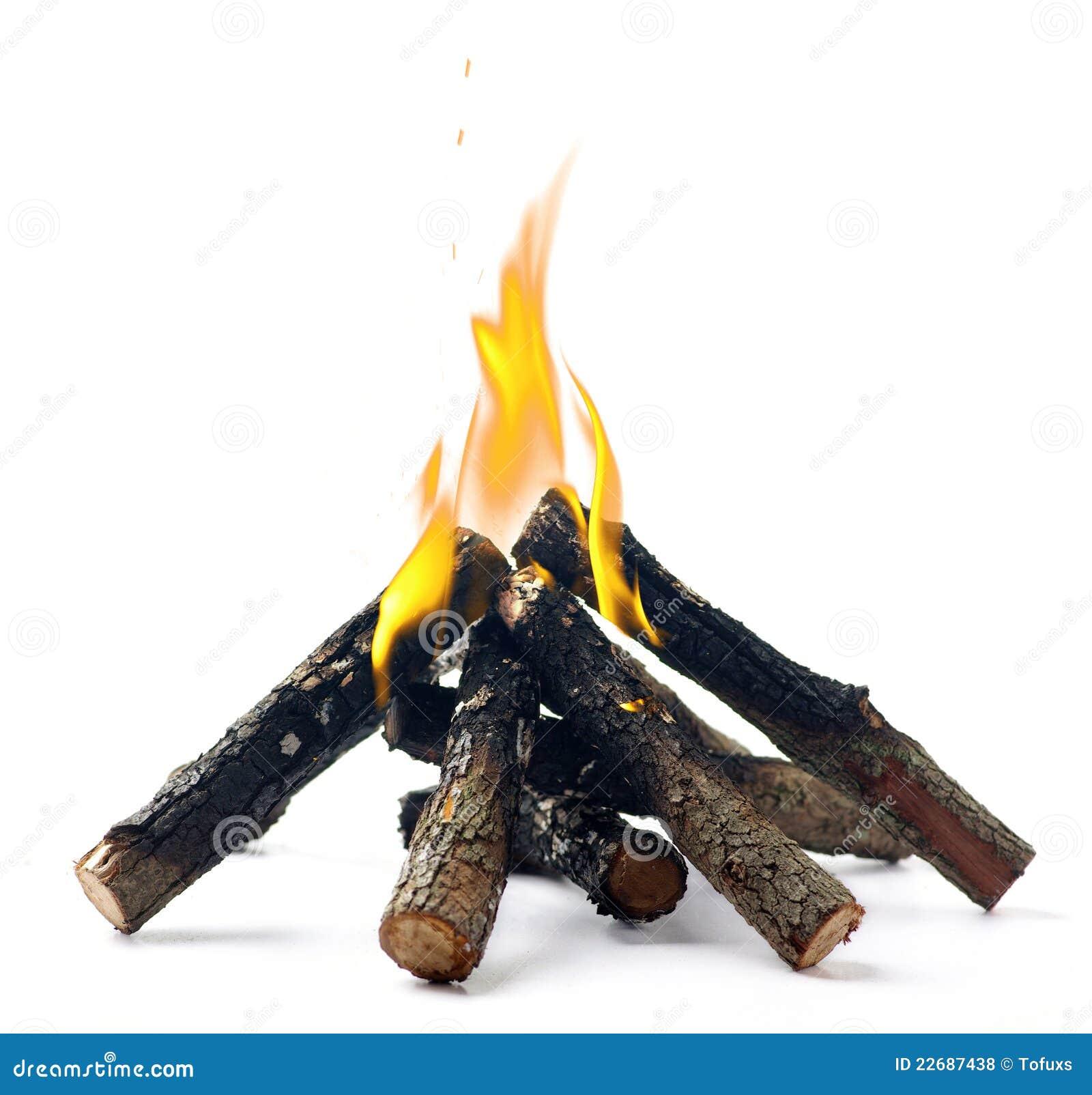 Campfire Royalty Free Stock Photos  Image 22687438