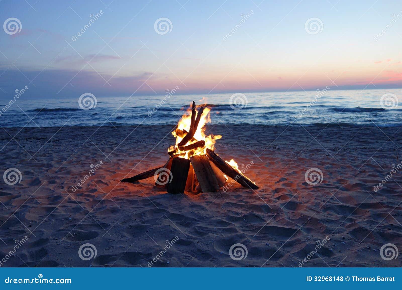 campfire on the beach stock photo. image of roast, marshmallows