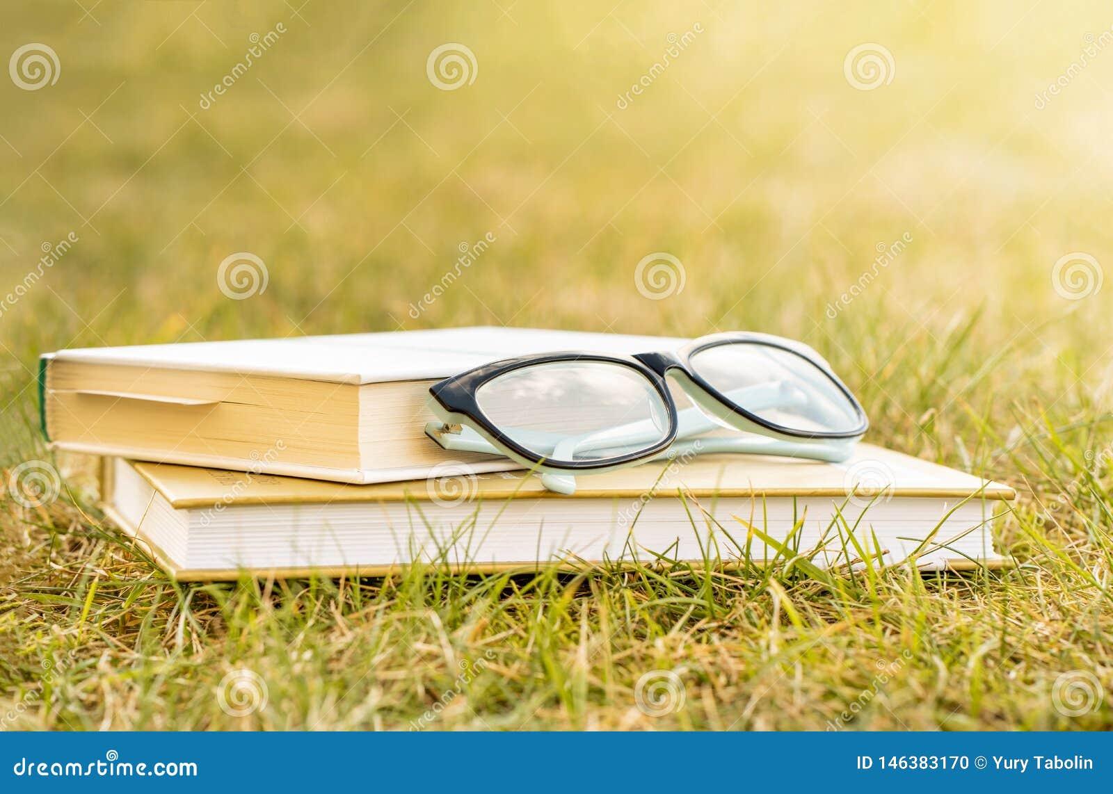 Outdoor recreation reading a book
