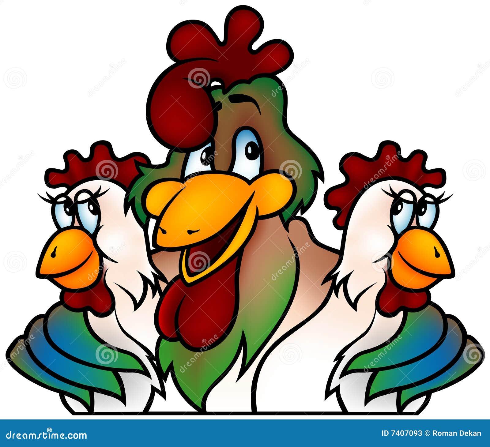 Campione del gallo