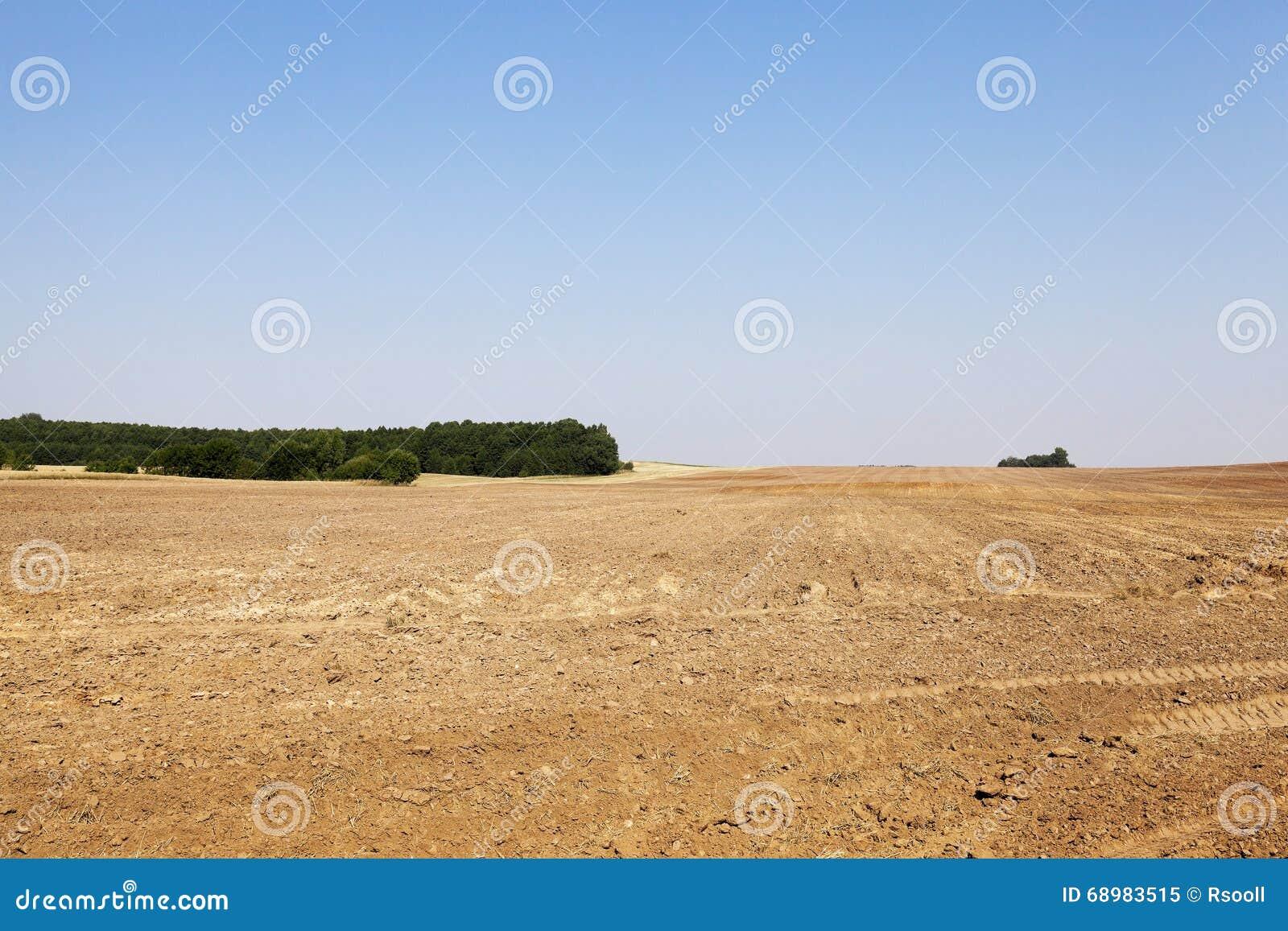 Campo agrícola arado