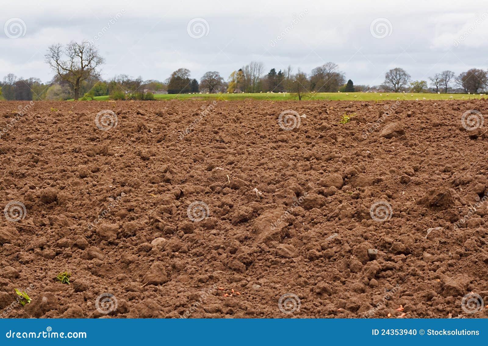 Campo agrícola recientemente cavado