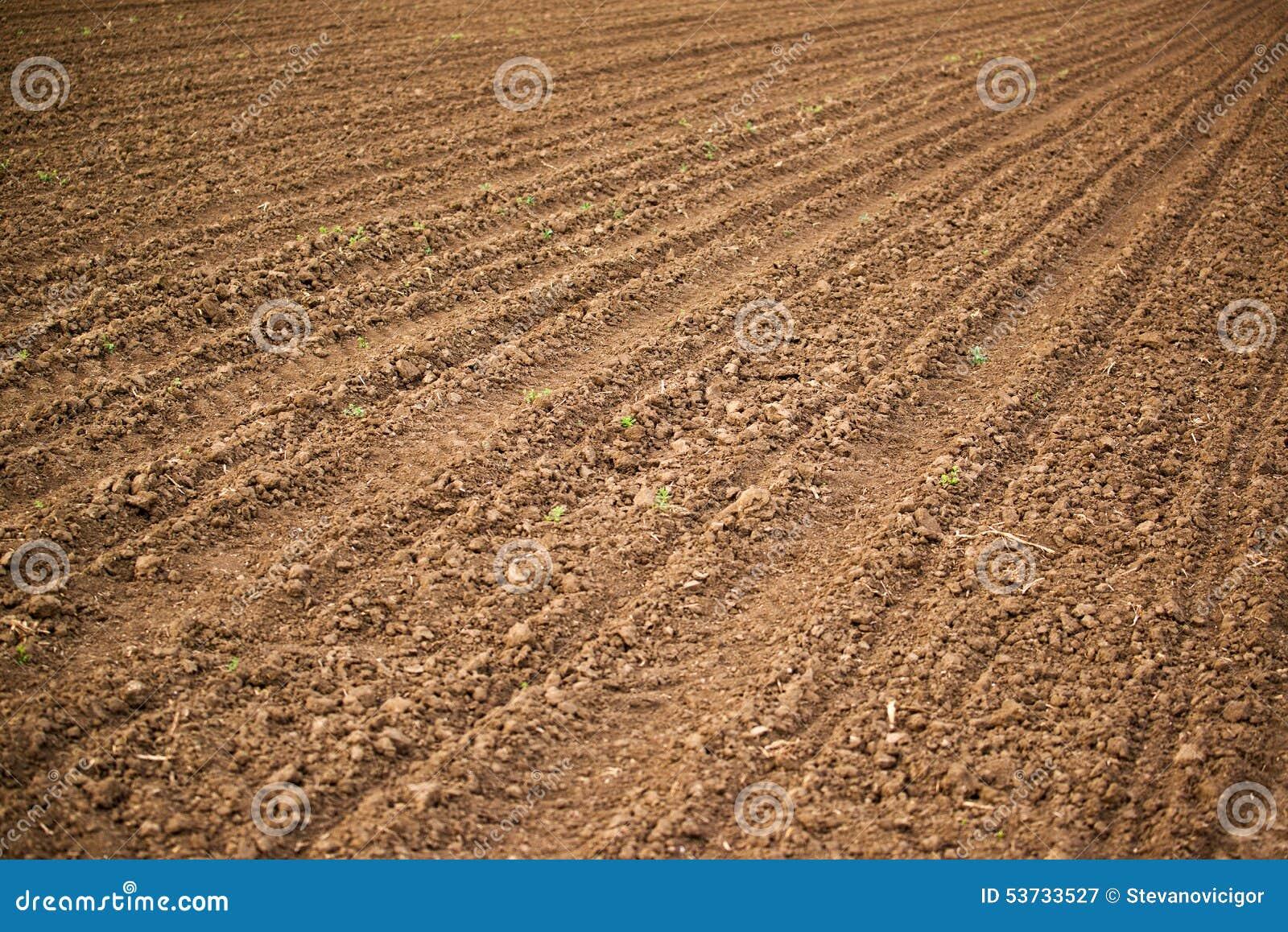 Campo agr cola suelo de la tierra de labrant o foto de for Tierra suelo wallpaper