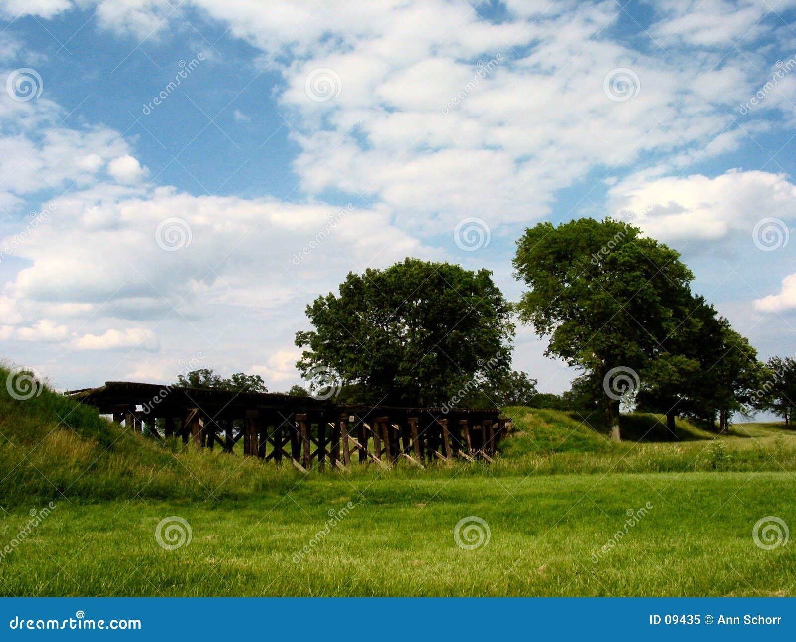 Campo centrale dell Illinois