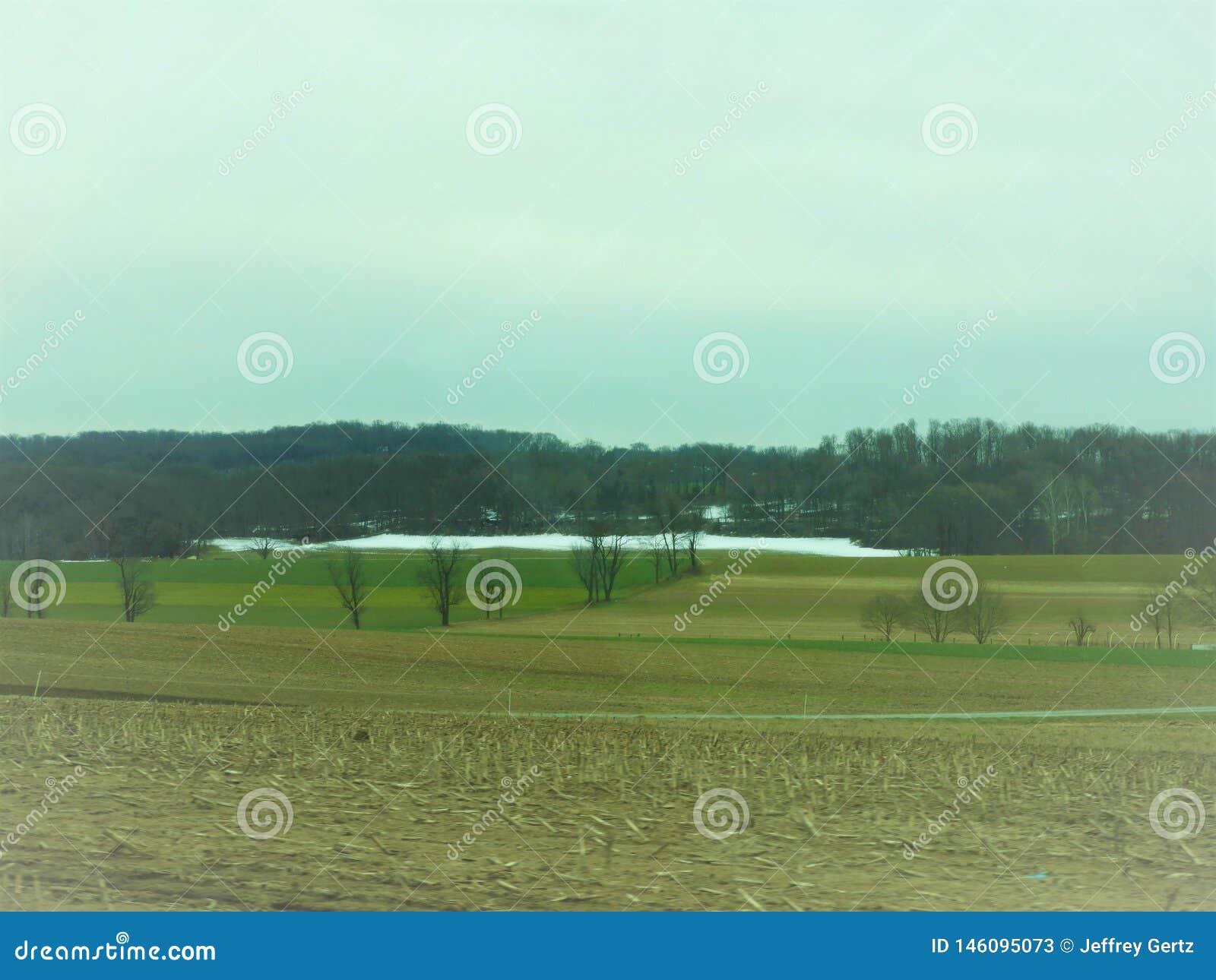 Campo collinoso in Pensilvania con neve ed alberi nella distanza