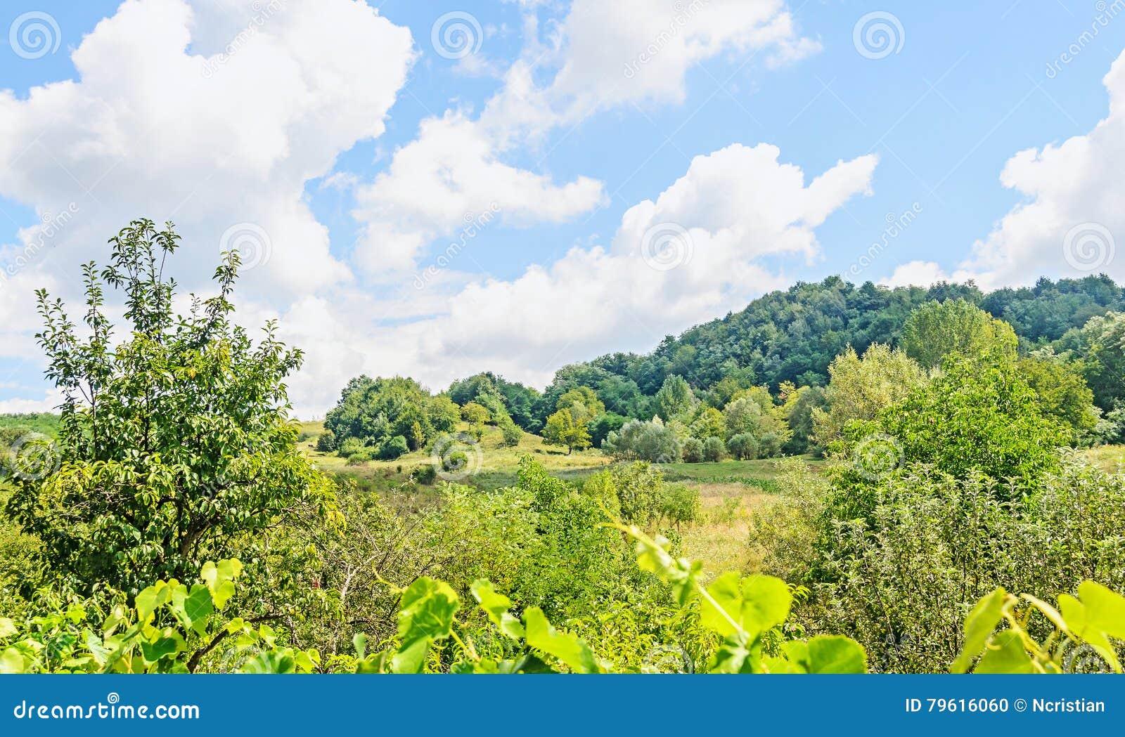 Campo da região Horezu com montes, florestas e fileds, soma