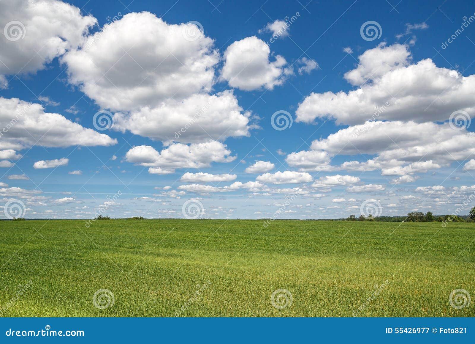 Campo das nuvens do céu