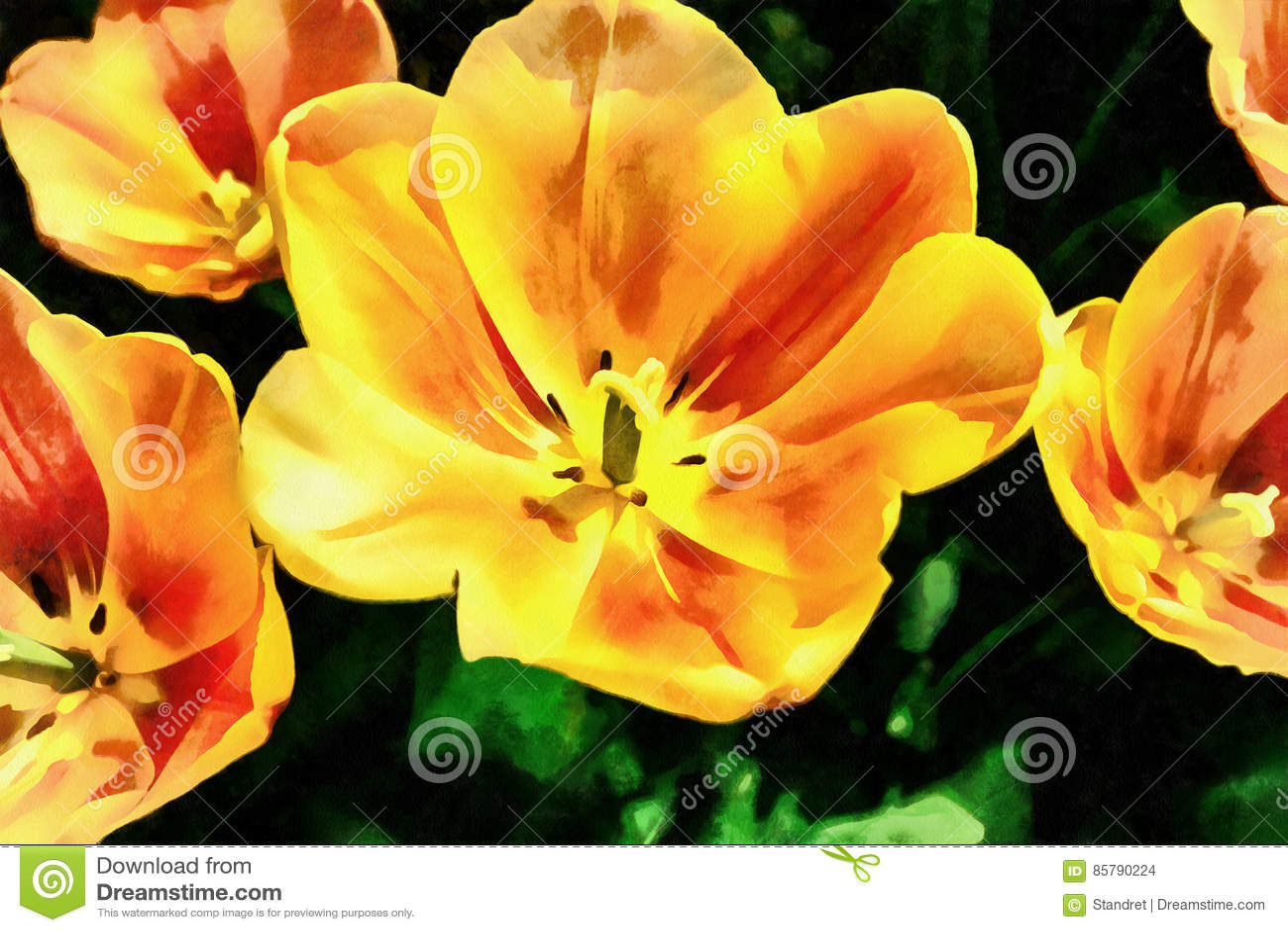 Campo de flor con los tulipanes coloridos Los trabajos en el estilo del wat