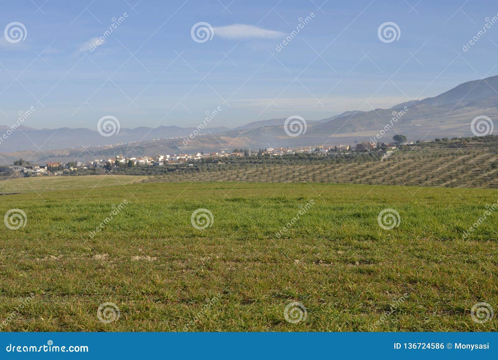 Campo de Granada