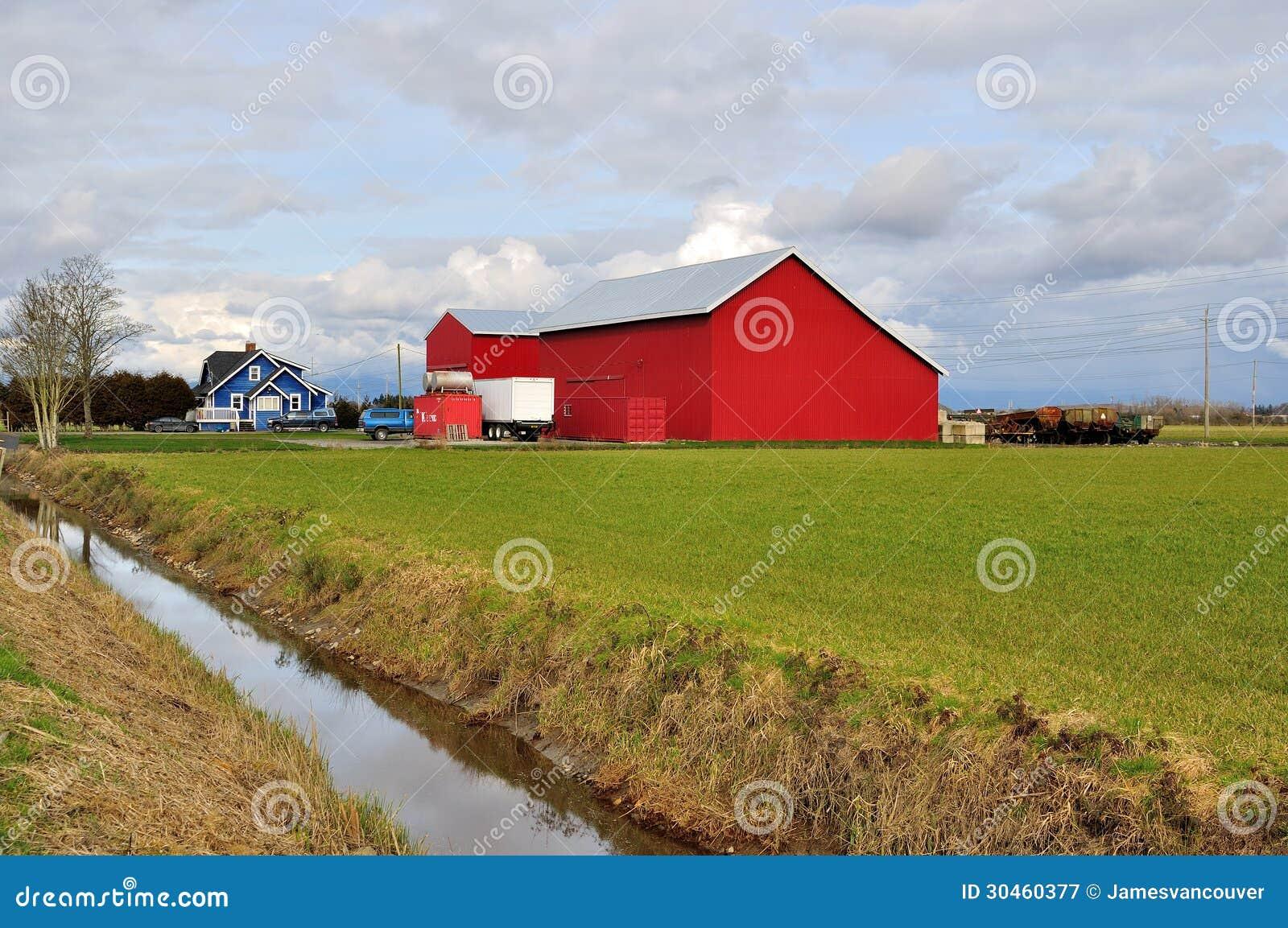 Campo de granja en tiempo de primavera